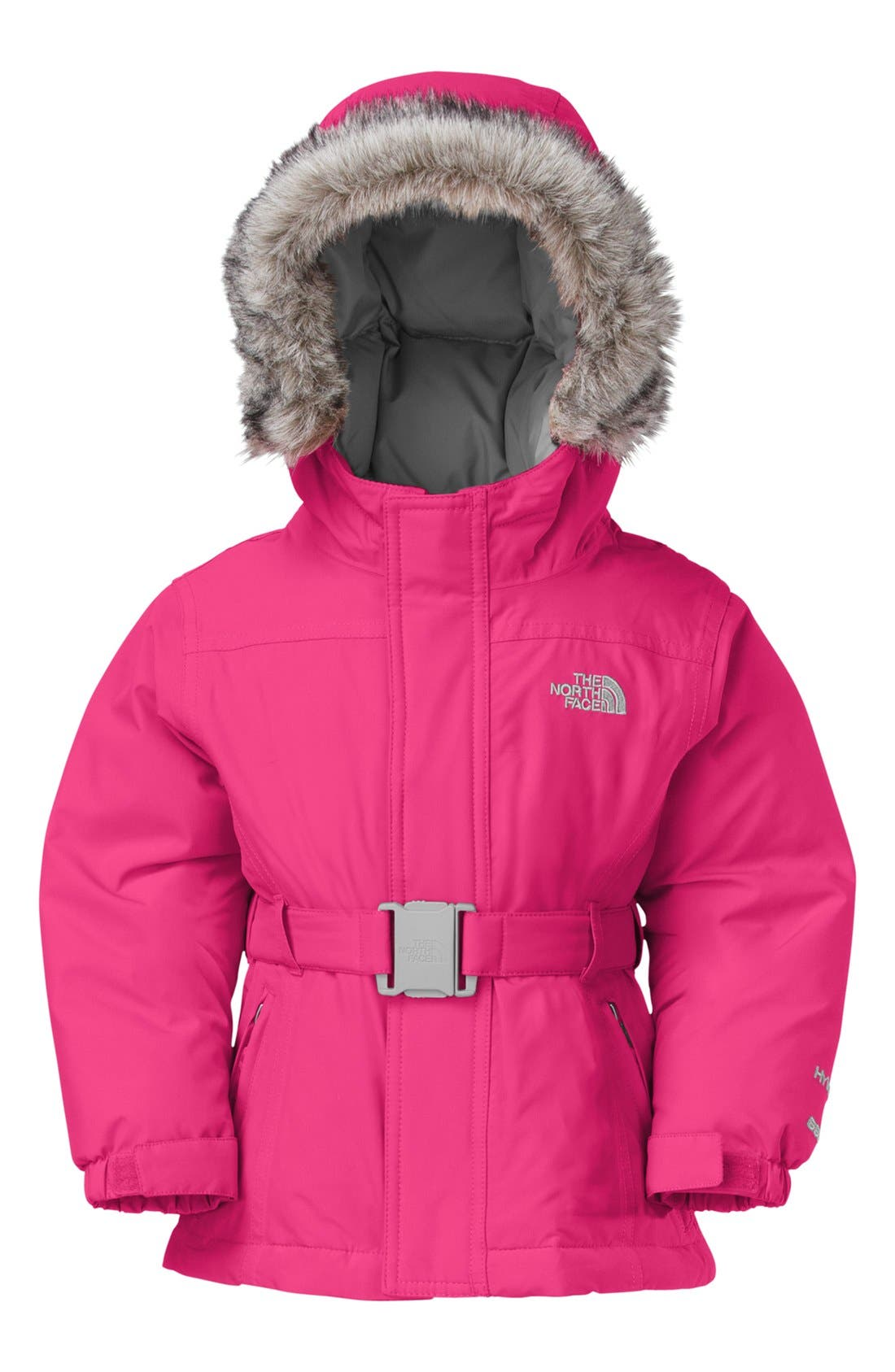 Alternate Image 2  - The North Face 'Greenland' Waterproof 550-Fill Down Jacket (Toddler Girls)