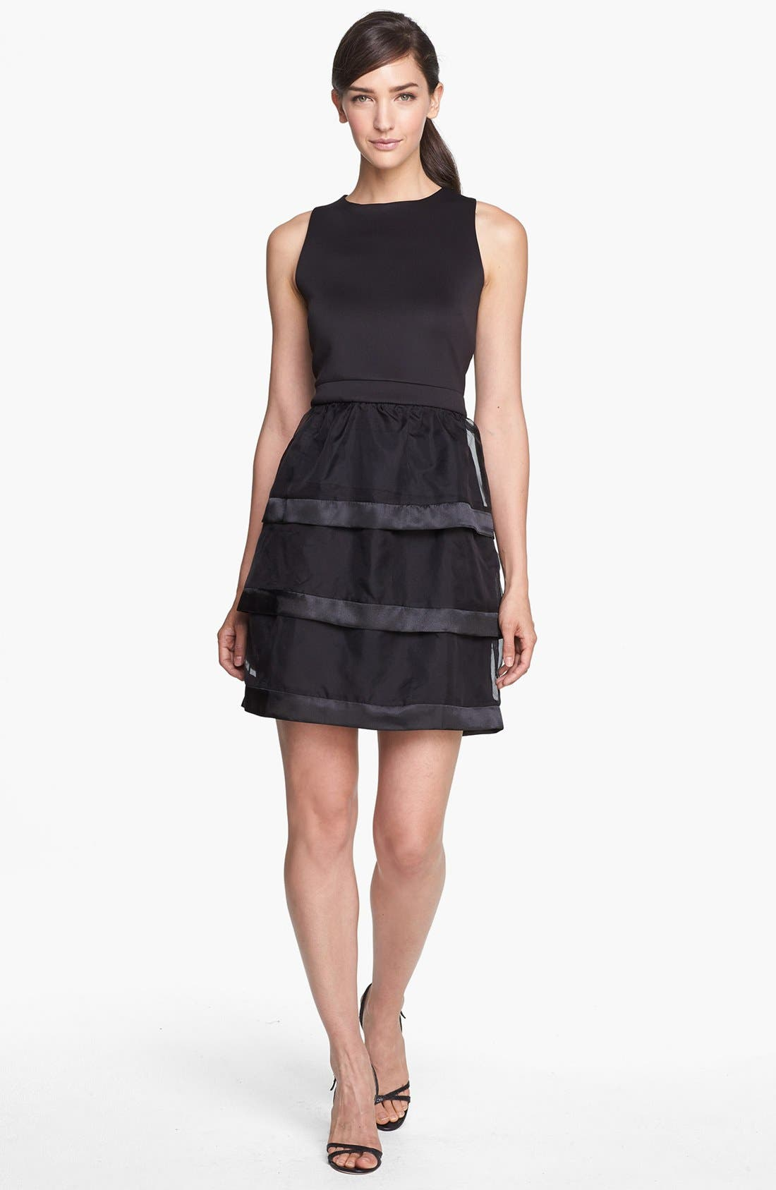 Alternate Image 1 Selected - Taylor Dresses Tiered Fit & Flare Dress