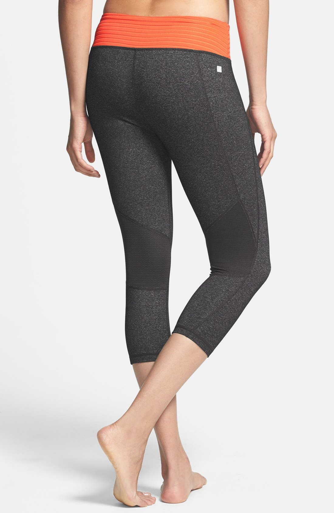 Alternate Image 2  - MSP by Miraclesuit® Miraslim Stripe Capri Pants