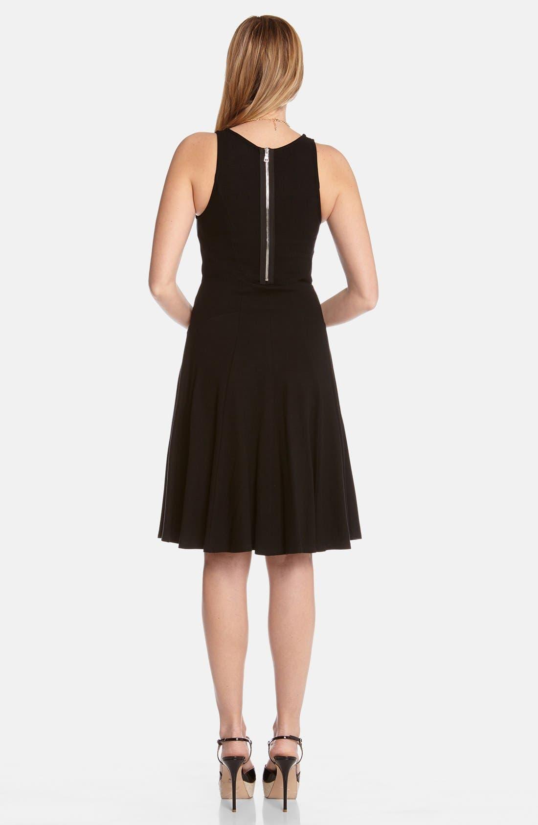 Alternate Image 2  - Karen Kane 'Diana' Panel Dress