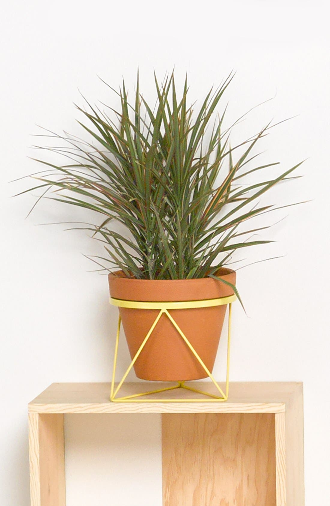 Alternate Image 1 Selected - Eric Trine Octahedron Ring Planter