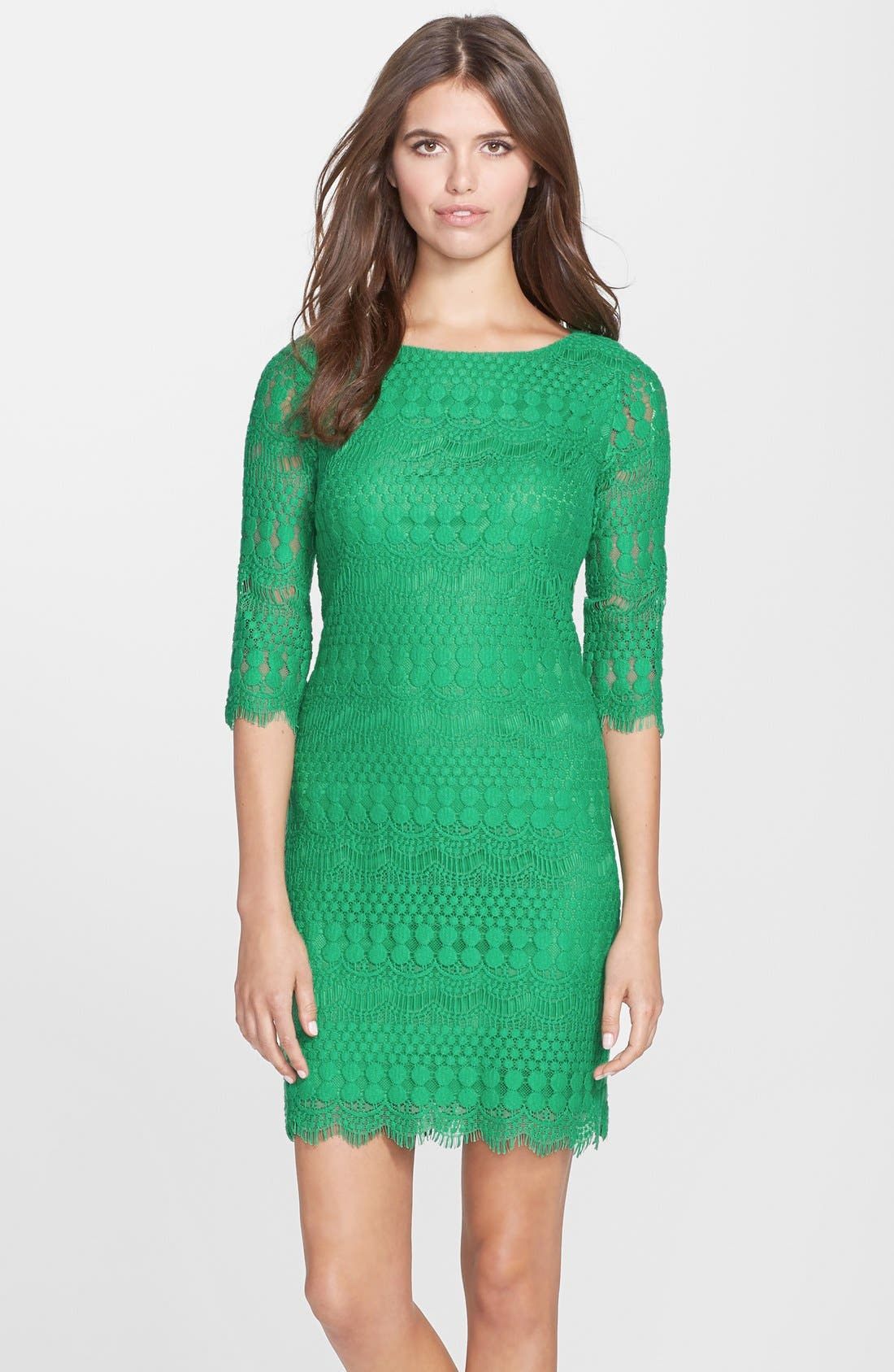 Main Image - Eliza J Scalloped Lace Shift Dress (Petite)