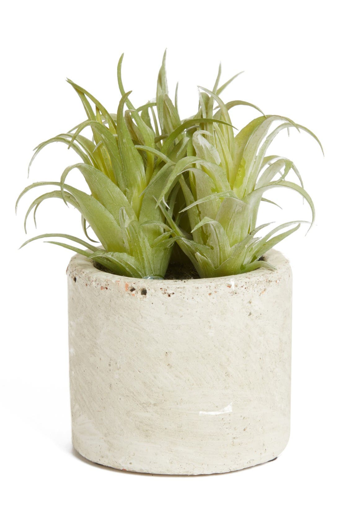 Alternate Image 1 Selected - ALLSTATE Mini Artificial Succulent