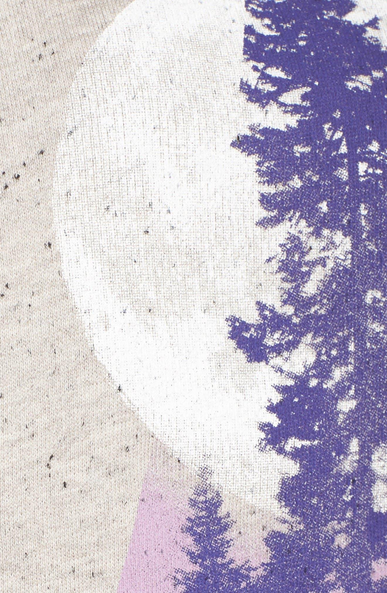 Alternate Image 5  - Retrospective Co. Terry Short Pajamas