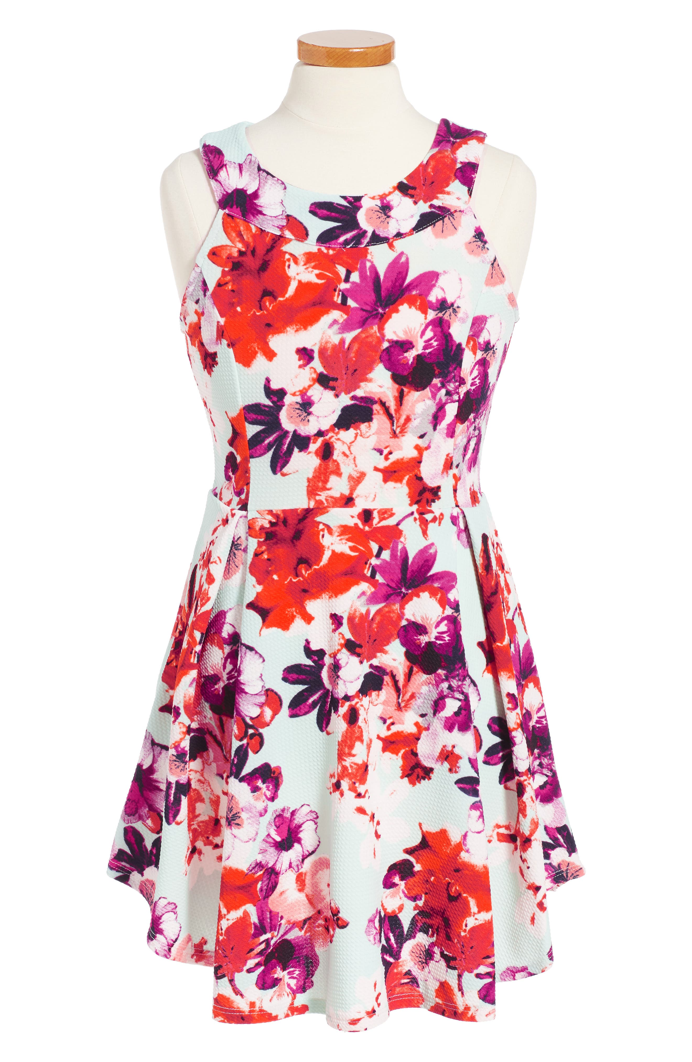 Ava & Yelly Floral Skater Dress (Big Girls)