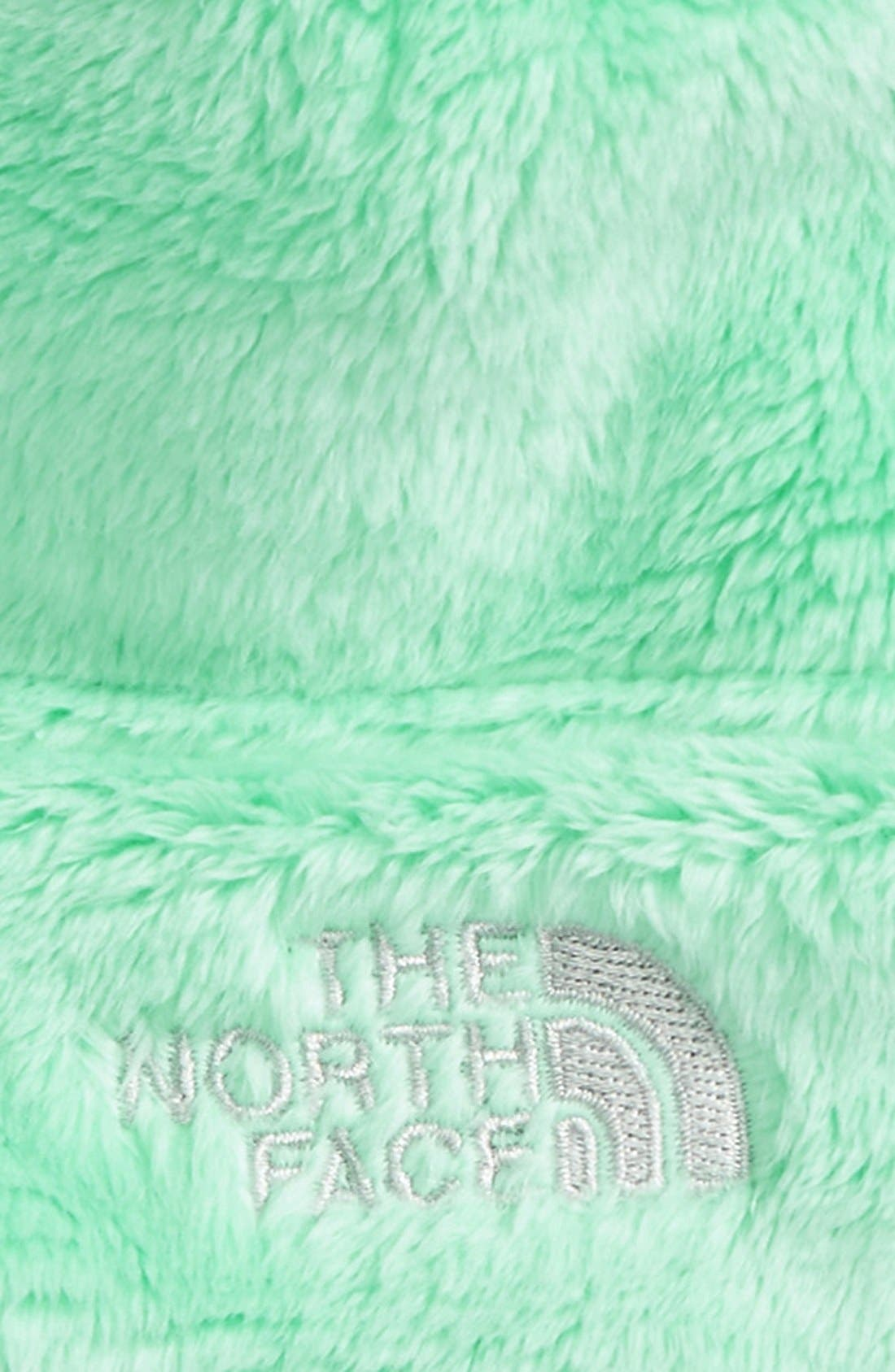 Alternate Image 2  - The North Face 'Oso Cute' Beanie (Baby)