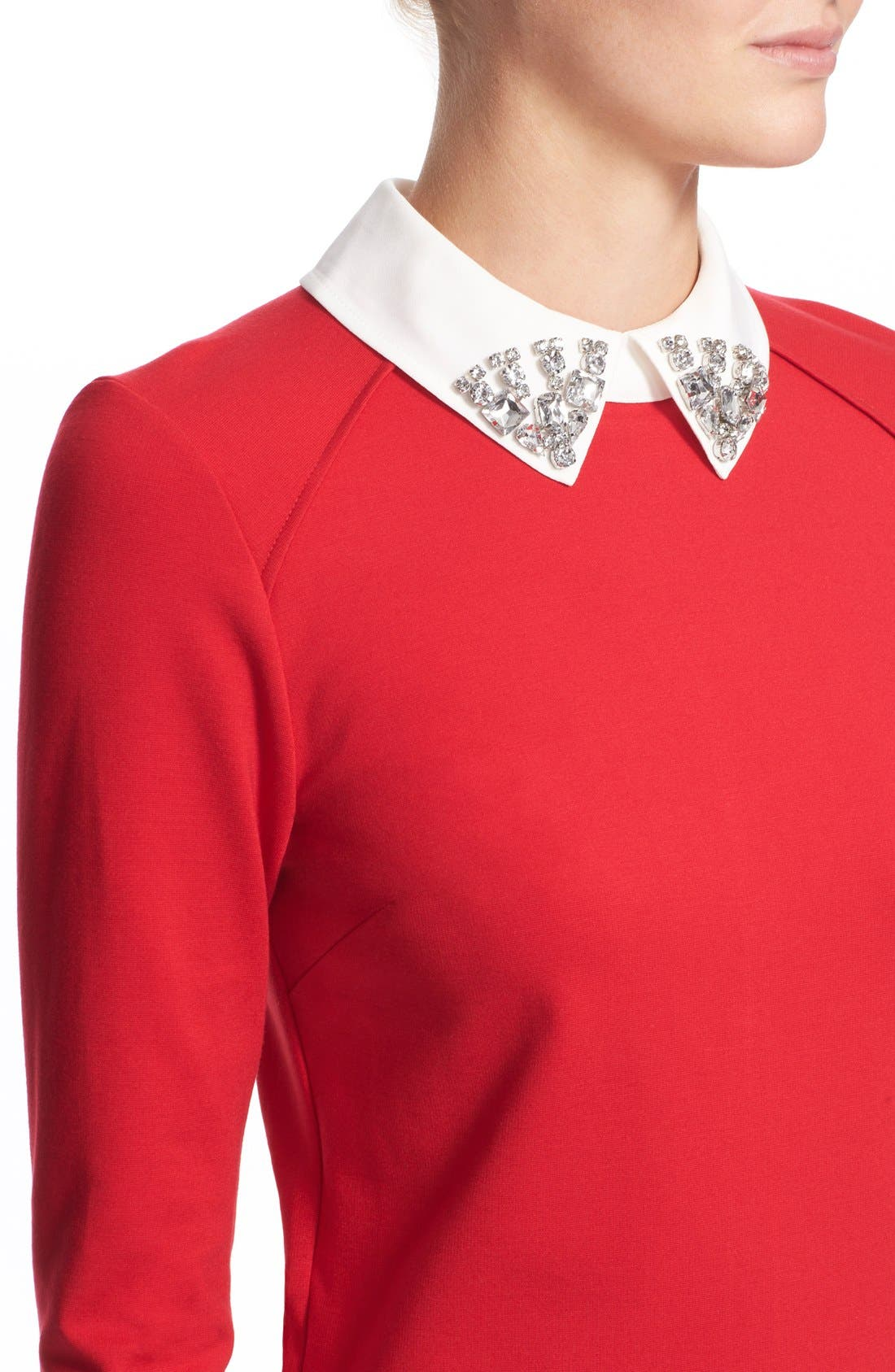 Alternate Image 5  - Ted Baker London 'Eelah' Embellished Collar Shift Dress