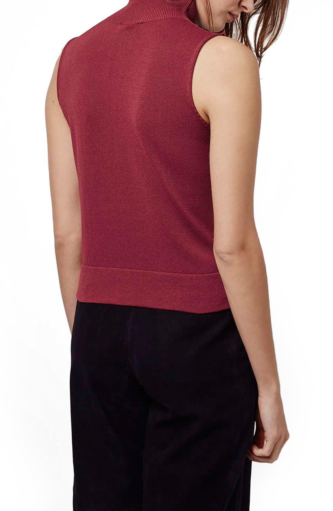 Alternate Image 3  - Topshop Sleeveless Funnel Neck Sweater