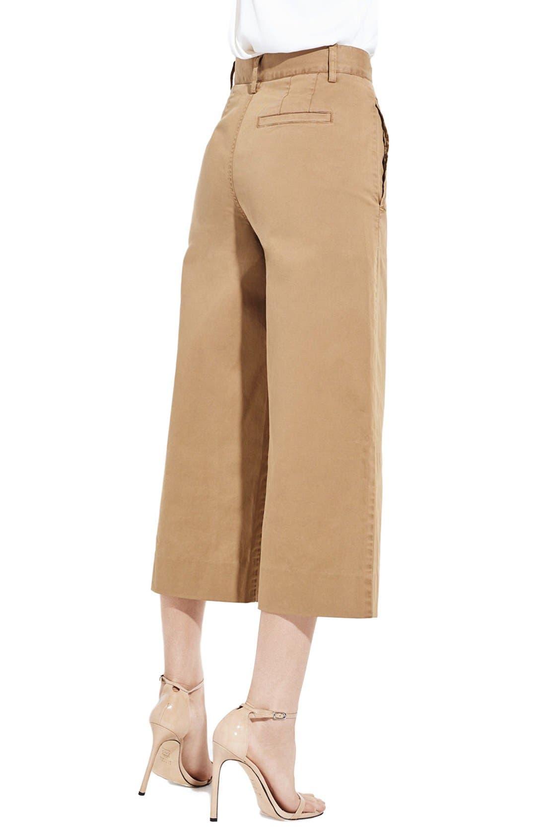 Alternate Image 2  - AYR 'The Gaucho' Pants