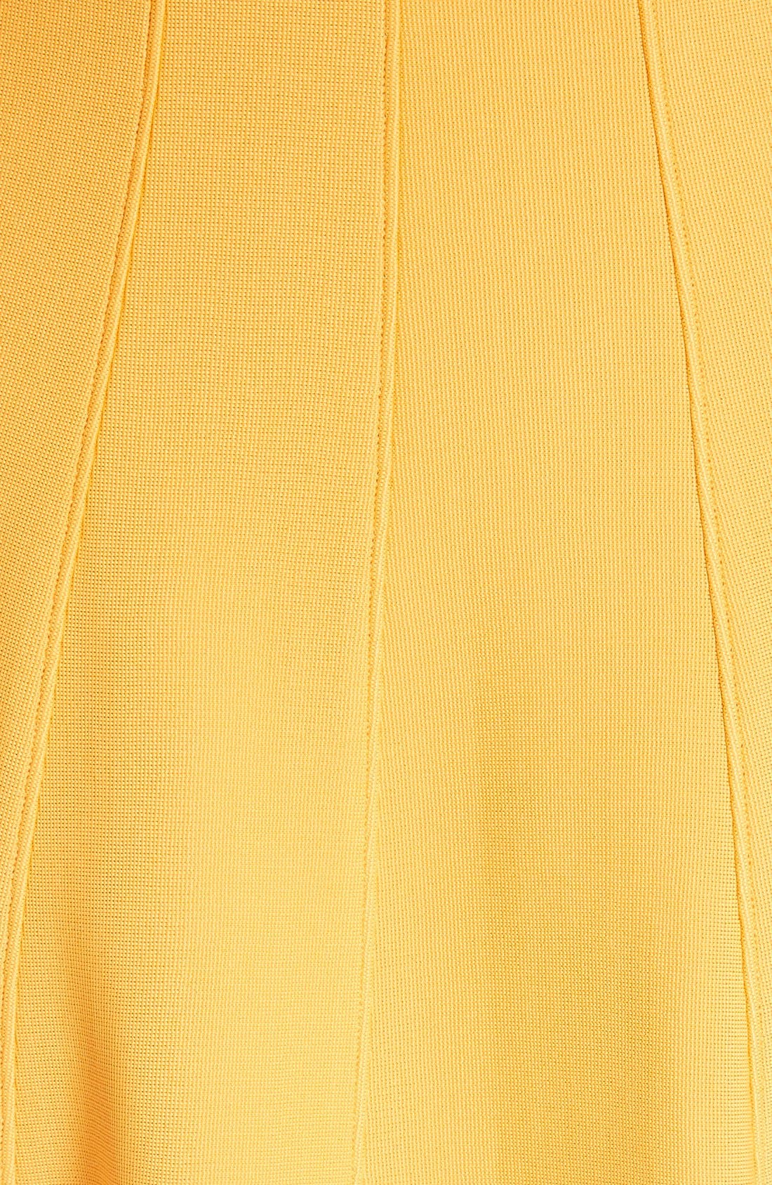 Alternate Image 5  - Tibi Corset Structured Midi Dress