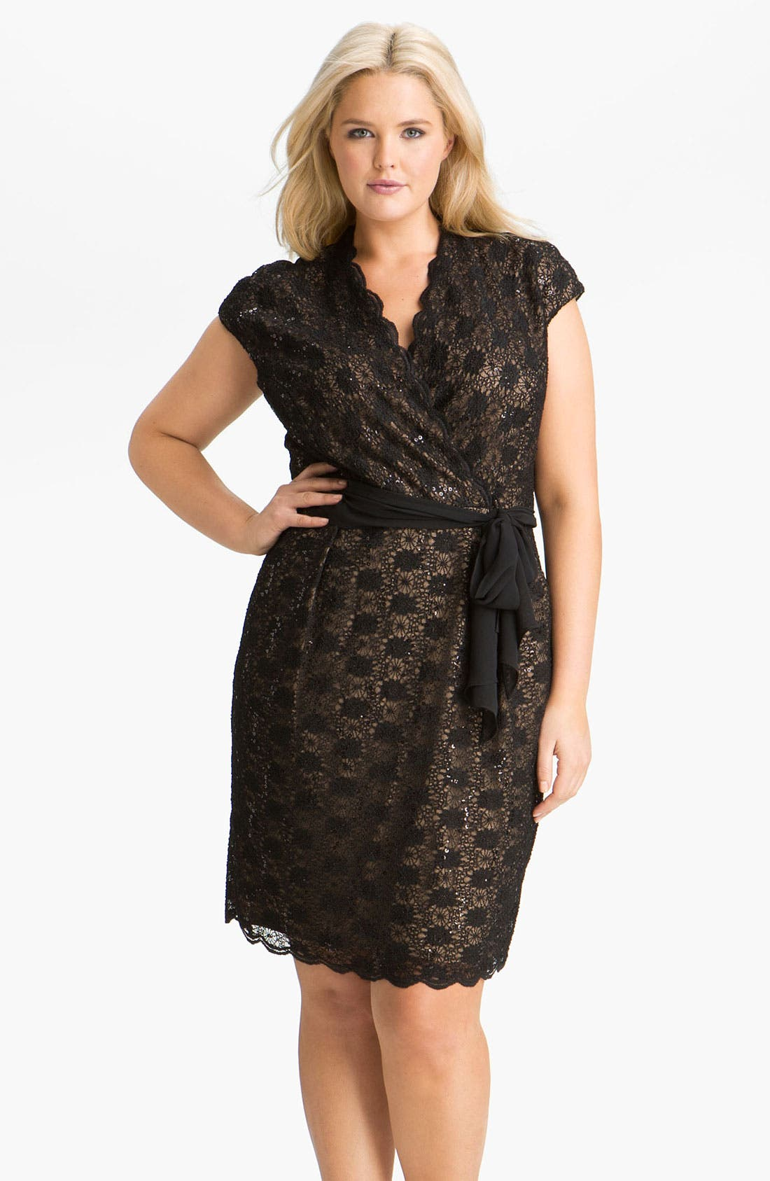 Alternate Image 1 Selected - Alex Evenings Surplice Lace Dress (Plus Size)