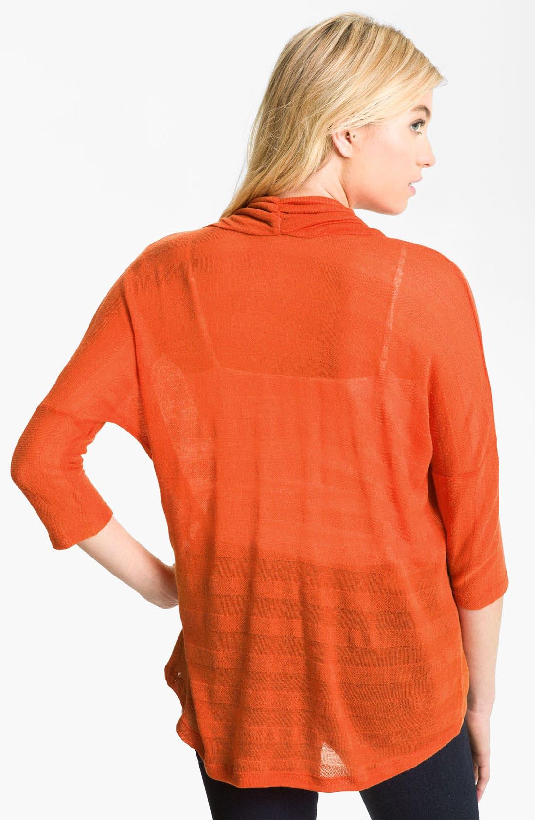 Alternate Image 2  - Stem Sheer Stripe Cowl Neck Top