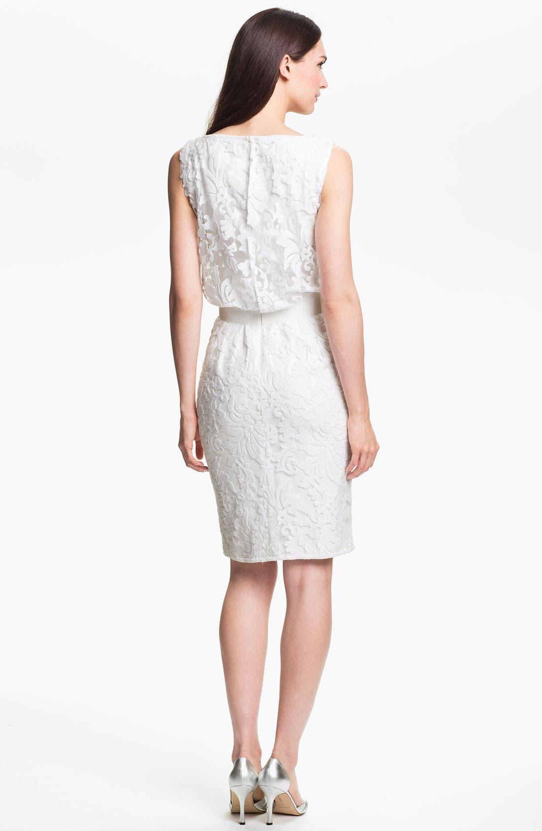 Alternate Image 2  - Tadashi Shoji Tulle & Lace Blouson Dress
