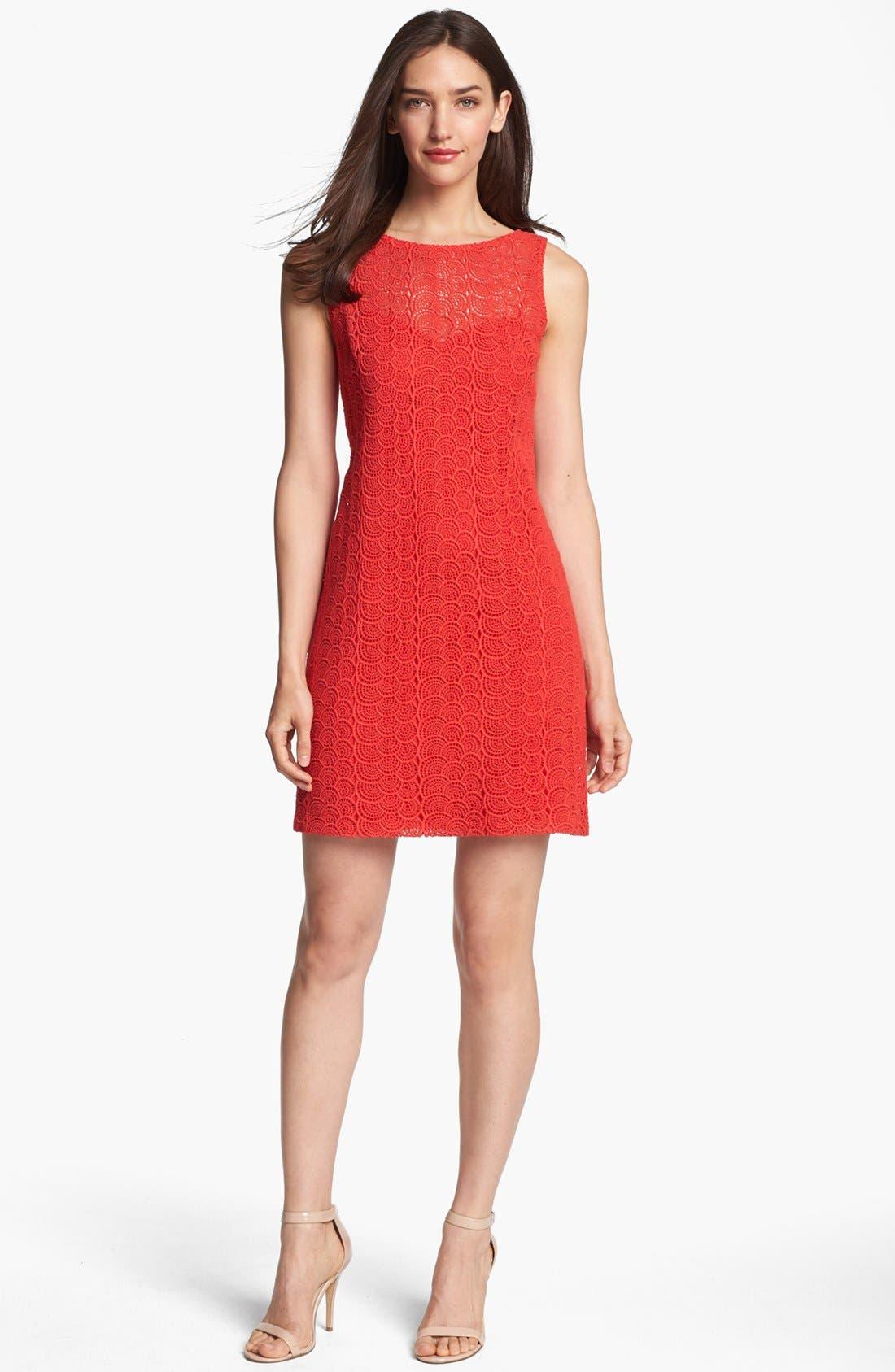 Main Image - Ivy & Blu Sleeveless Lace Shift Dress