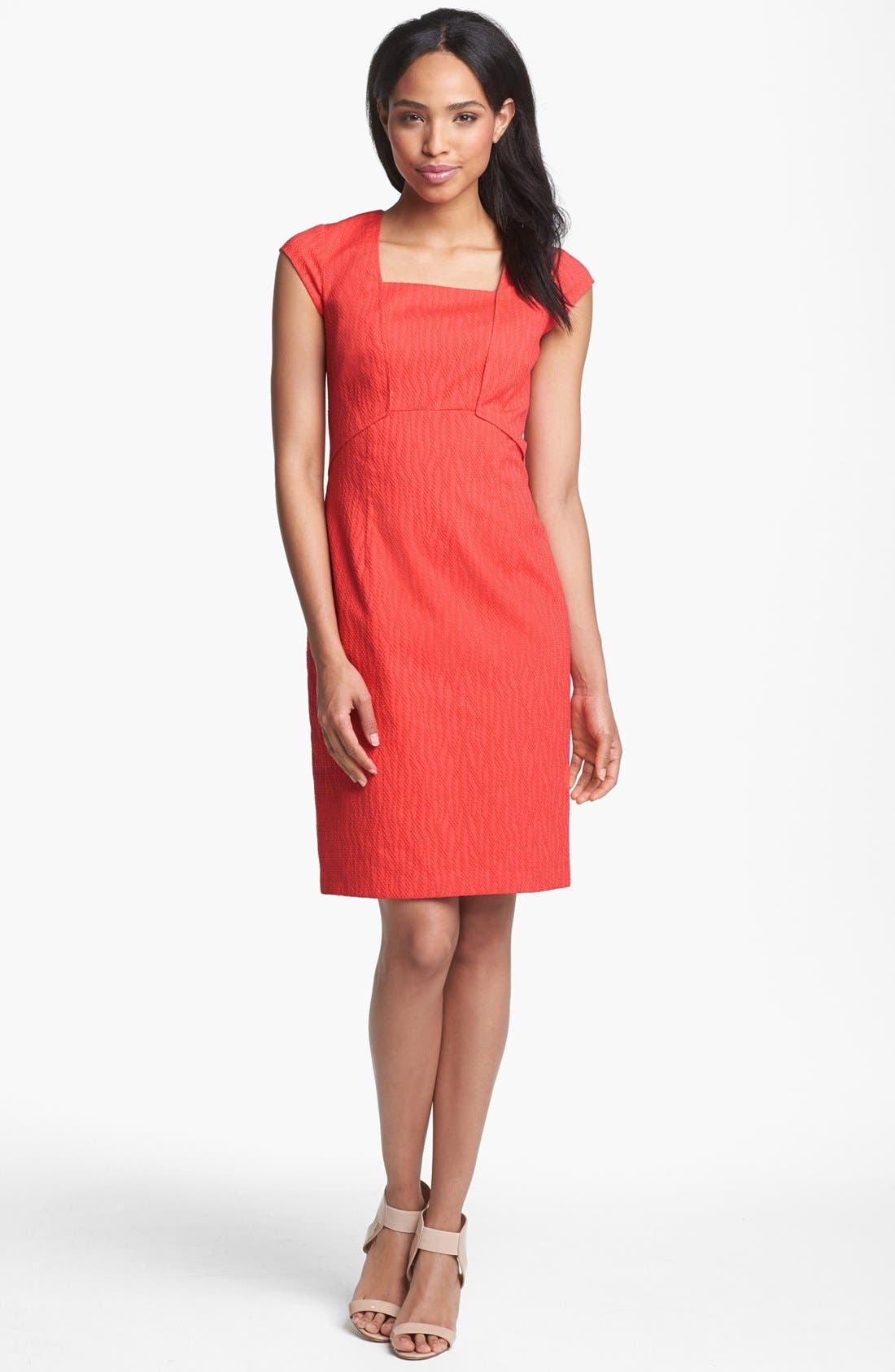 Alternate Image 1 Selected - Adrianna Papell Textured Sheath Dress