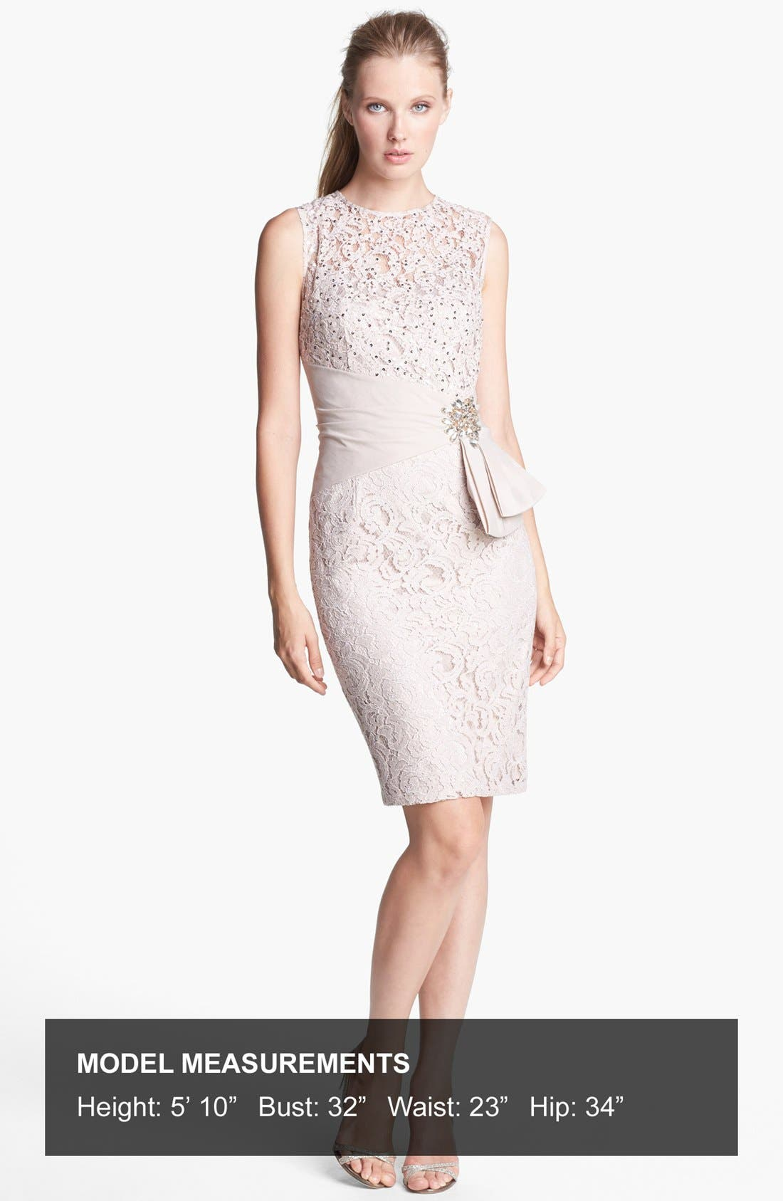 Alternate Image 4  - Eliza J Embellished Lace Sheath Dress