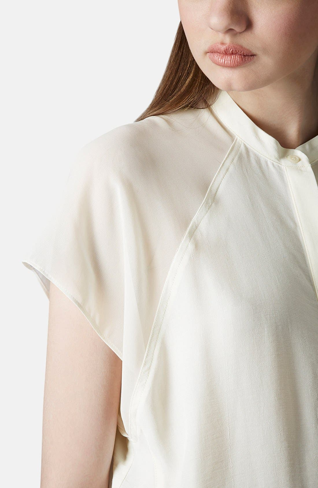 Alternate Image 4  - Topshop Sheer Raglan Sleeve Shirt