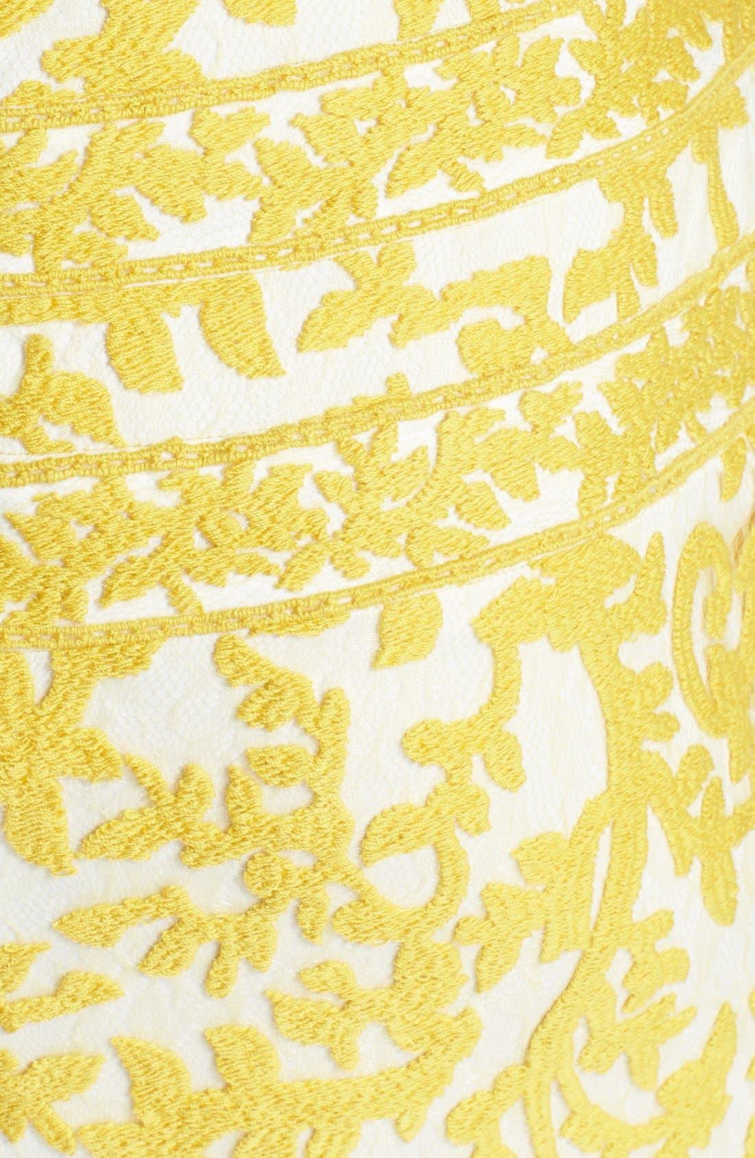Alternate Image 4  - Tadashi Shoji Embroidered Lace Sheath Dress (Regular & Petite)
