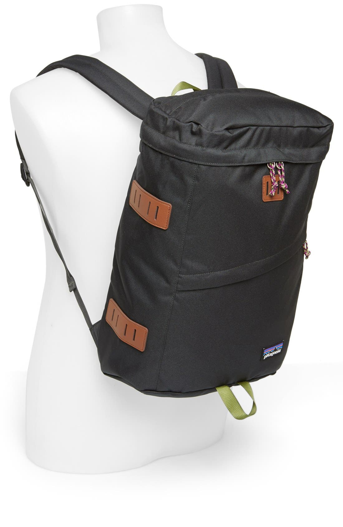 Alternate Image 2  - Patagonia 'Toromiro' Backpack (22 Liter)