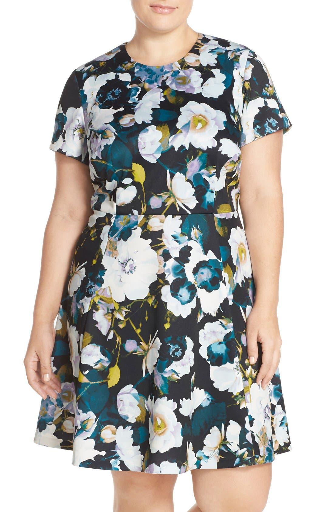 Main Image - Eliza J Floral Ponte Fit & Flare Dress (Plus Size)