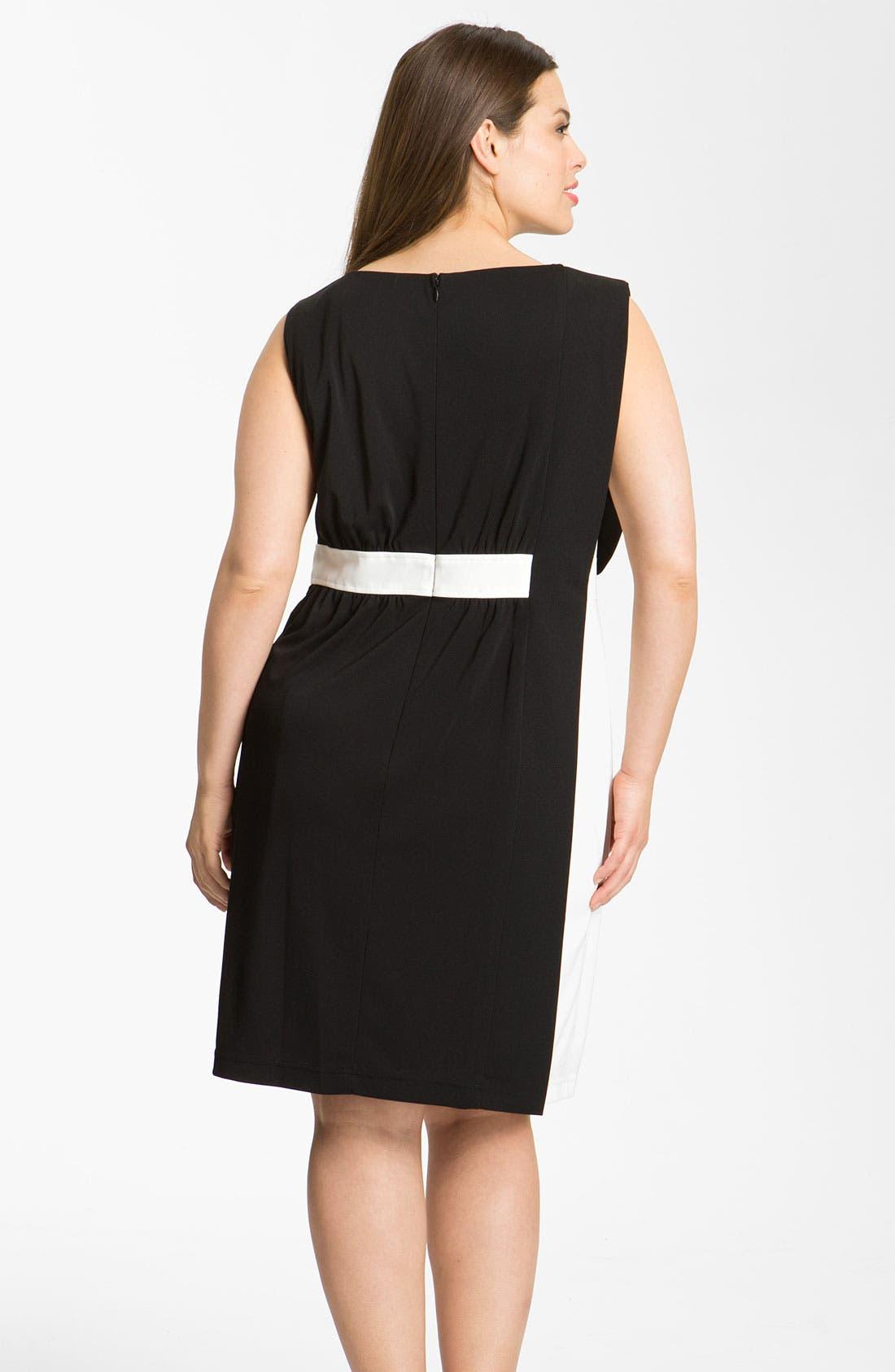 Alternate Image 2  - Adrianna Papell Colorblock Dress (Plus)