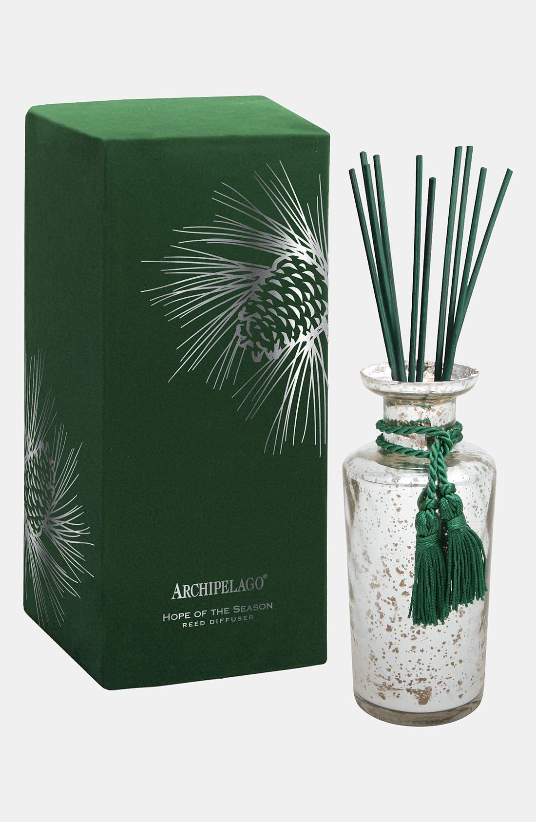 Main Image - Archipelago Botanicals 'Hope of the Season' Mercury Glass Diffuser
