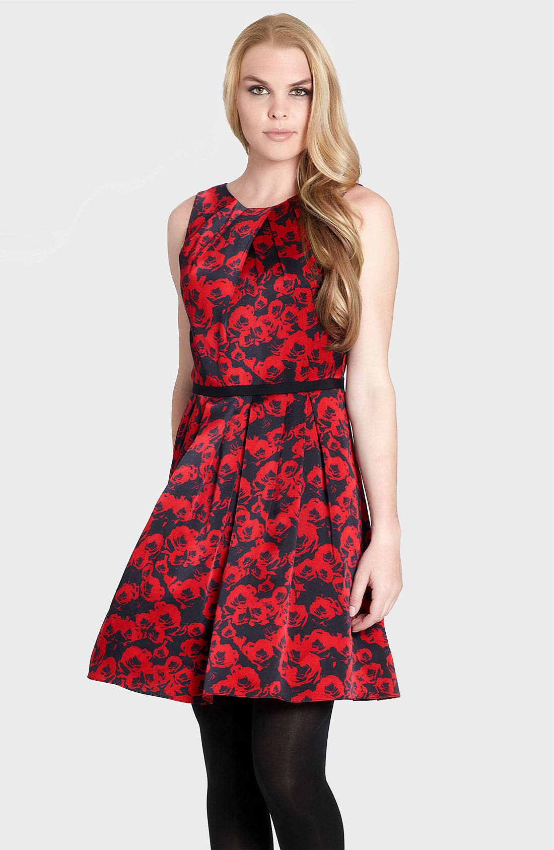 Alternate Image 1 Selected - Cynthia Steffe 'Cadence' Print Pleated Fit & Flare Dress