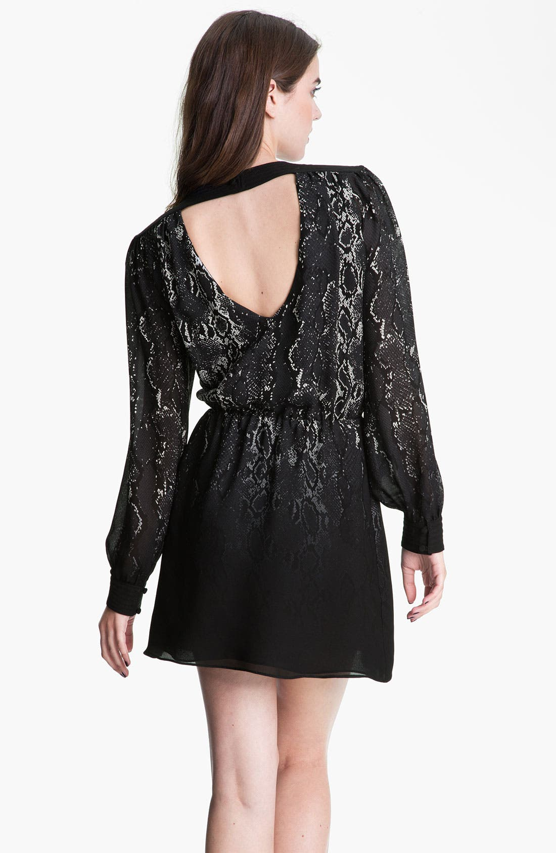 Alternate Image 2  - Parker Print Silk Dress
