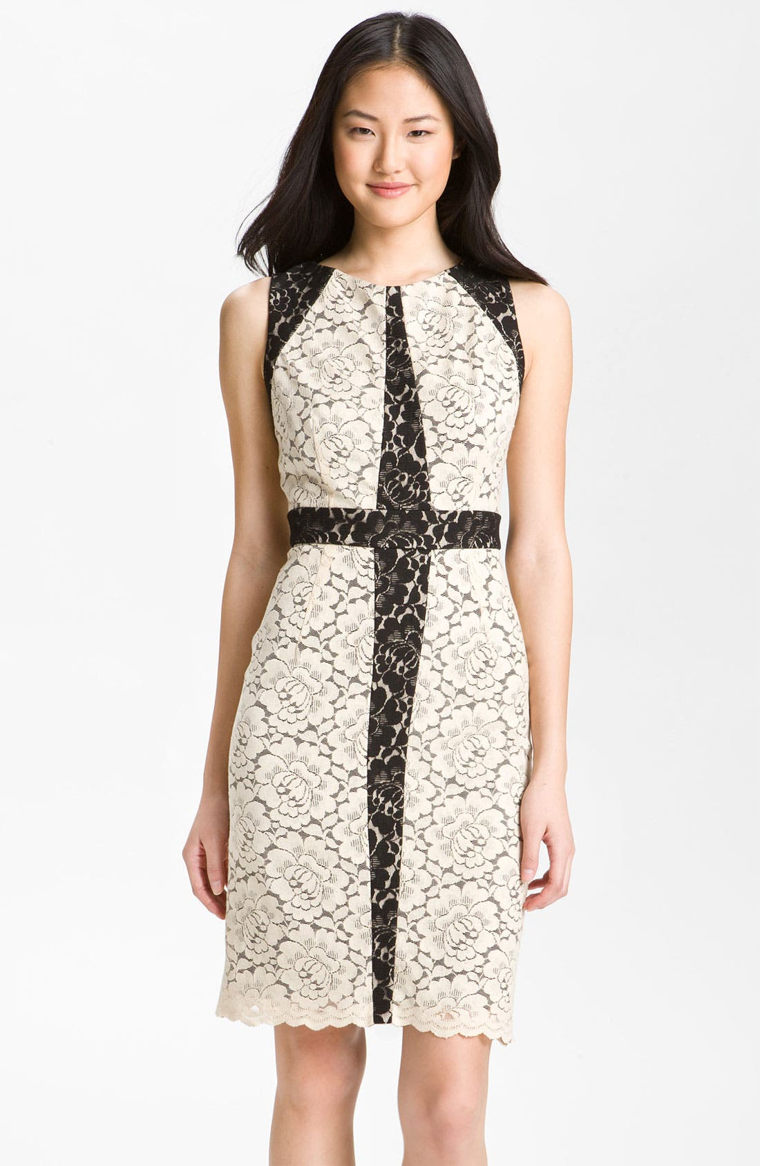 Alternate Image 1 Selected - Donna Ricco Contrast Lace Overlay Sheath Dress (Petite)