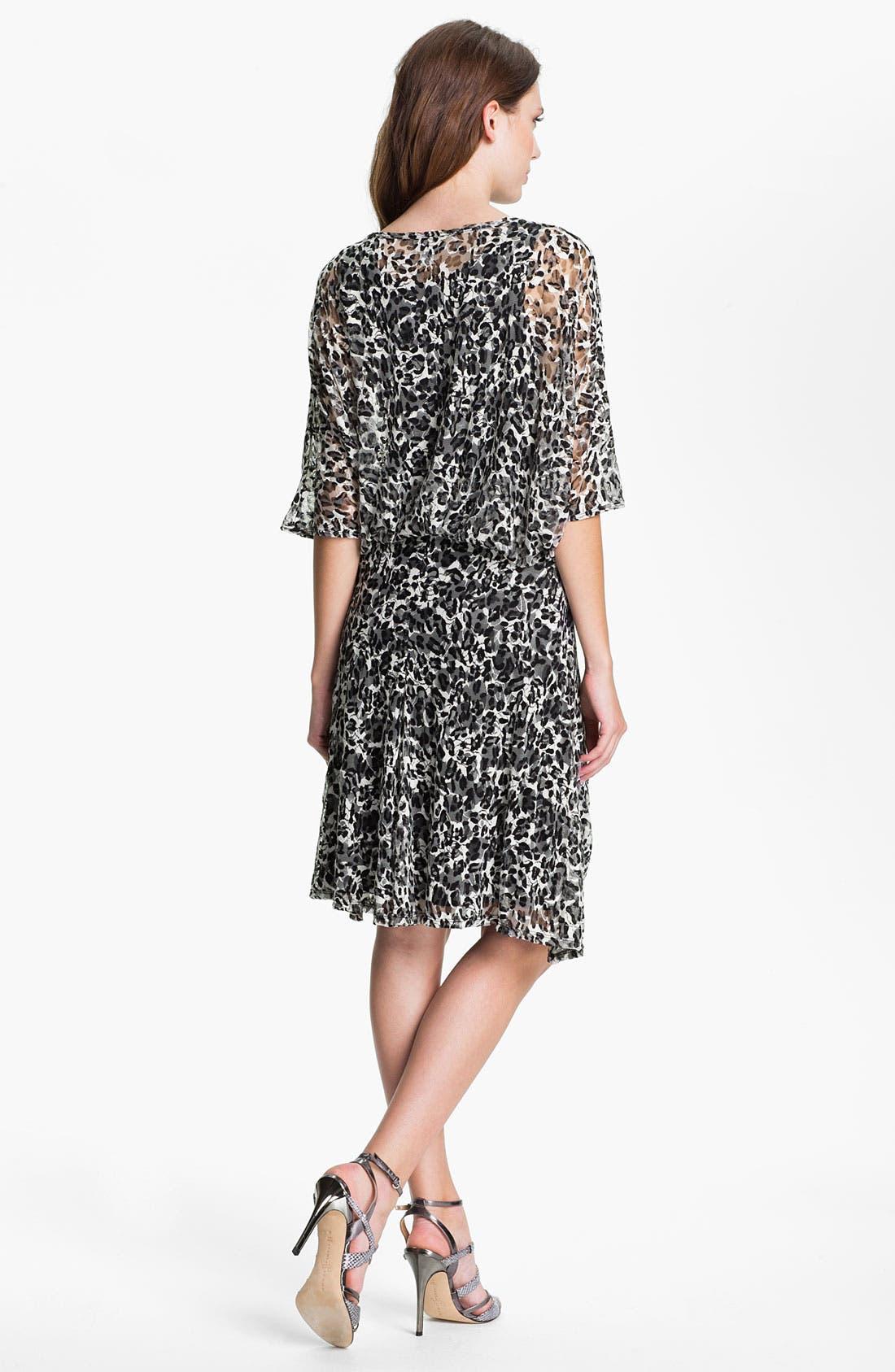 Alternate Image 2  - Lizzie Parker 'Anne' Sheer Sleeve Printed Blouson Dress