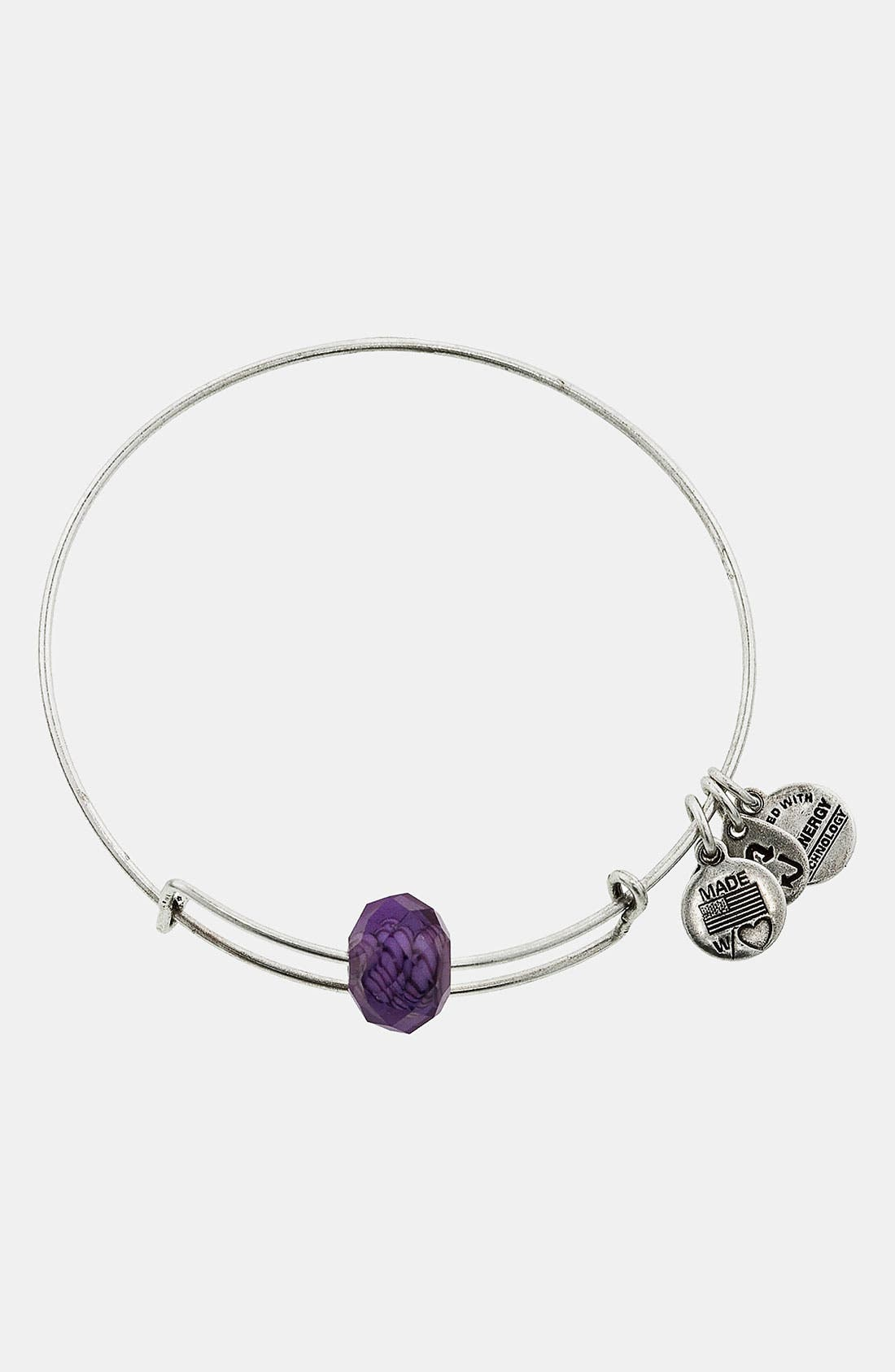 Alternate Image 1 Selected - Alex and Ani 'Short & Sweet' Expandable Wire Bangle
