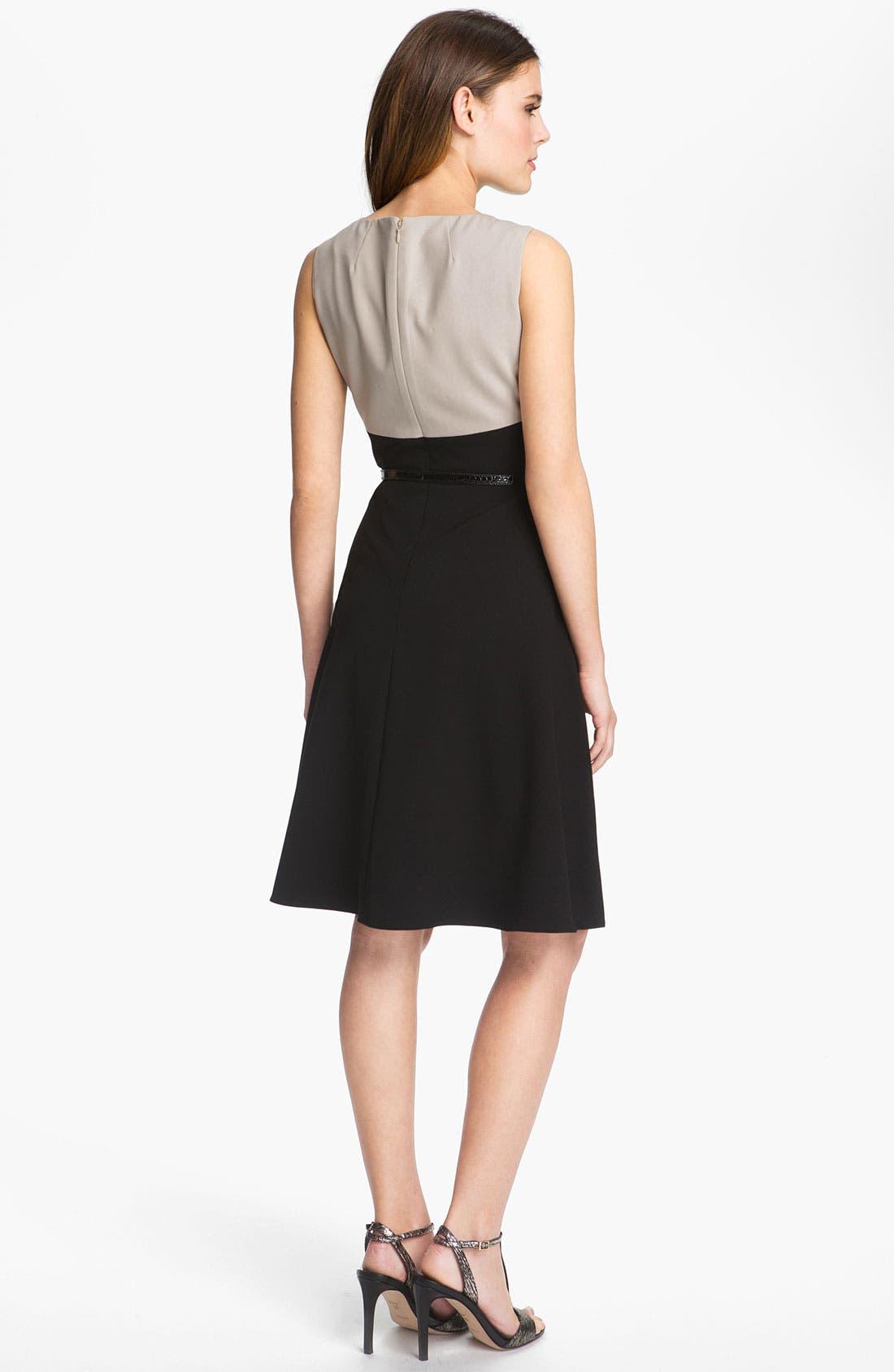 Alternate Image 2  - Calvin Klein Colorblock Fit & Flare Dress