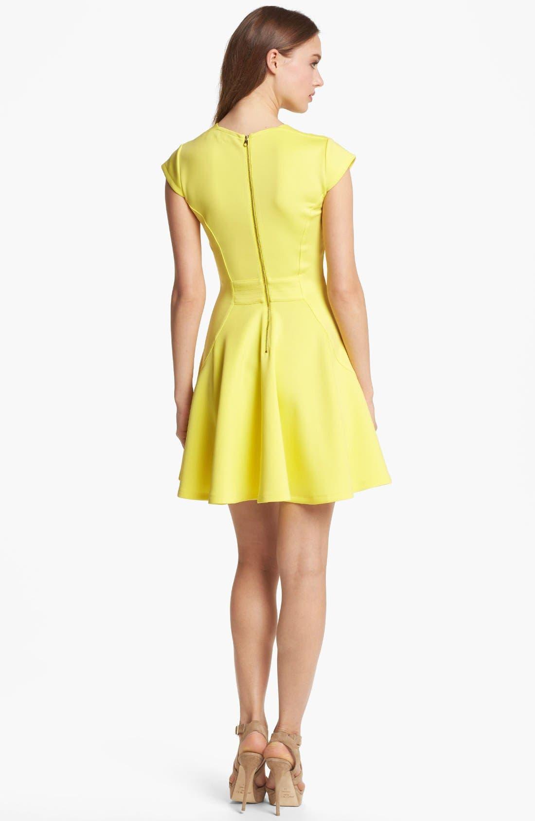 Alternate Image 2  - Ted Baker London Stretch Fit & Flare Dress