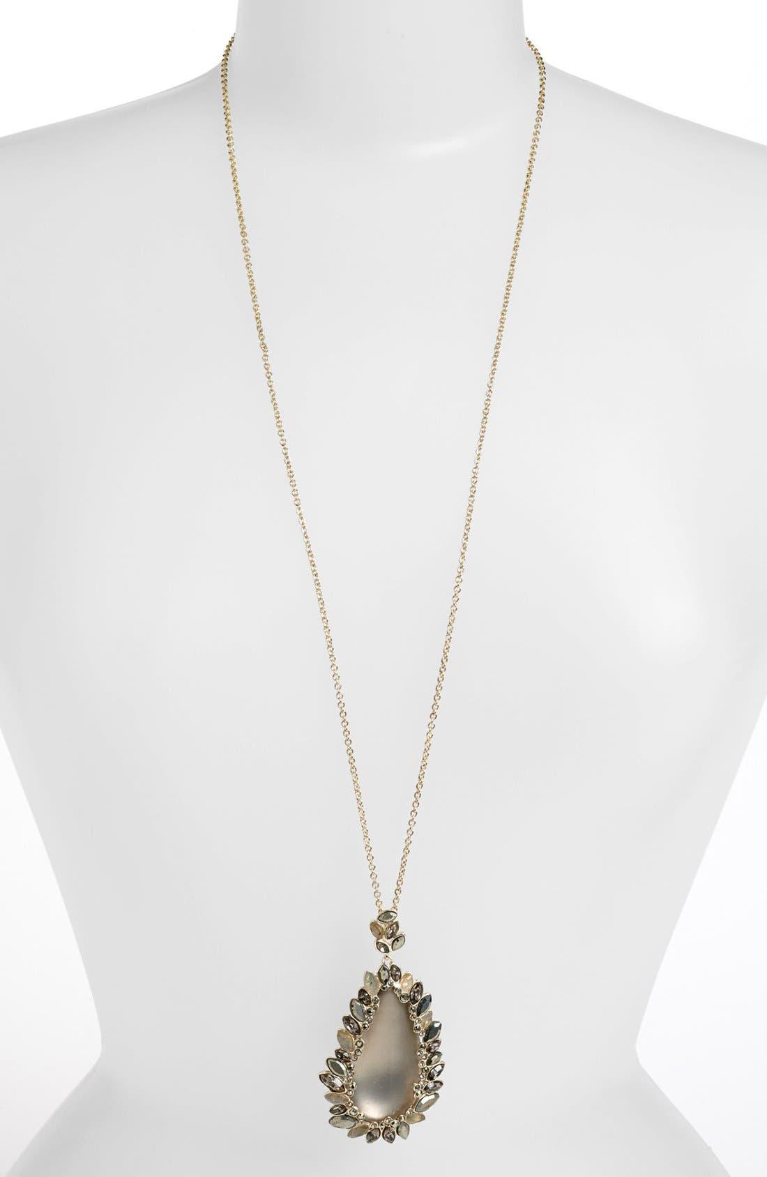 Alternate Image 1 Selected - Alexis Bittar 'Lucite® - Neo Bohemian' Long Paisley Pendant Necklace
