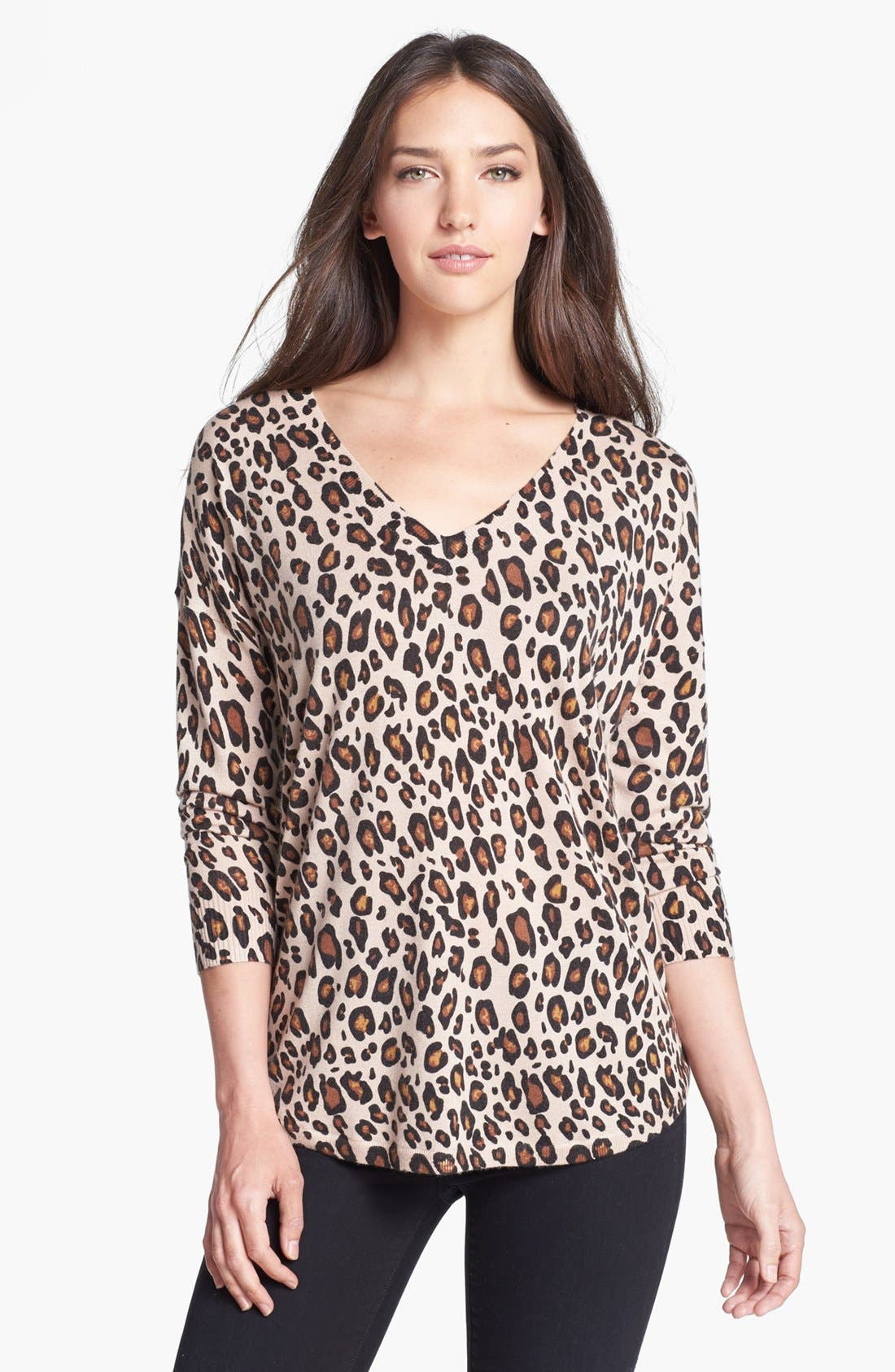 Alternate Image 1 Selected - Joie 'Chyanne' Print Sweater