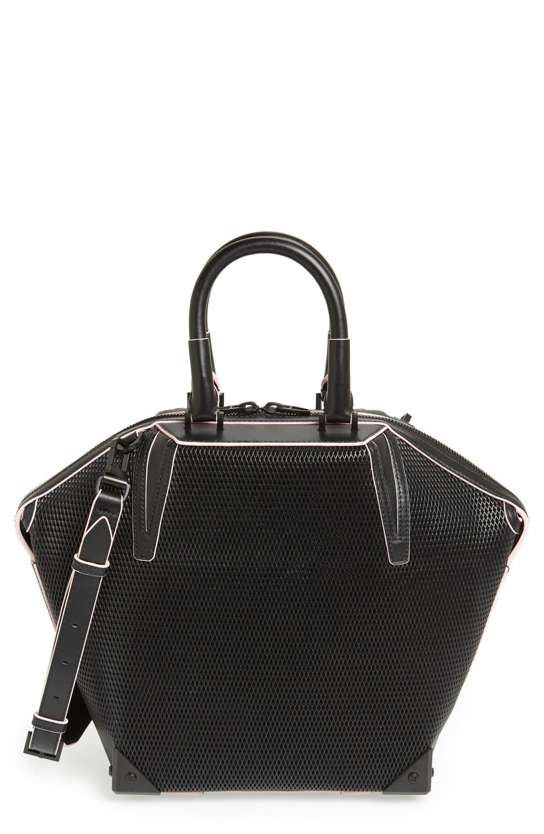 Alternate Image 1 Selected - Alexander Wang 'Small Emile' Leather Tote