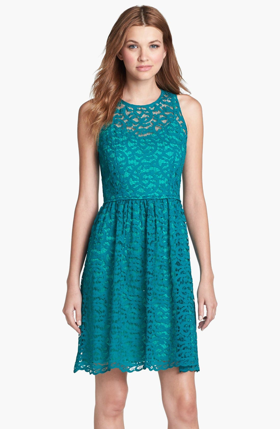 Alternate Image 1 Selected - Donna Ricco Lace Fit & Flare Dress