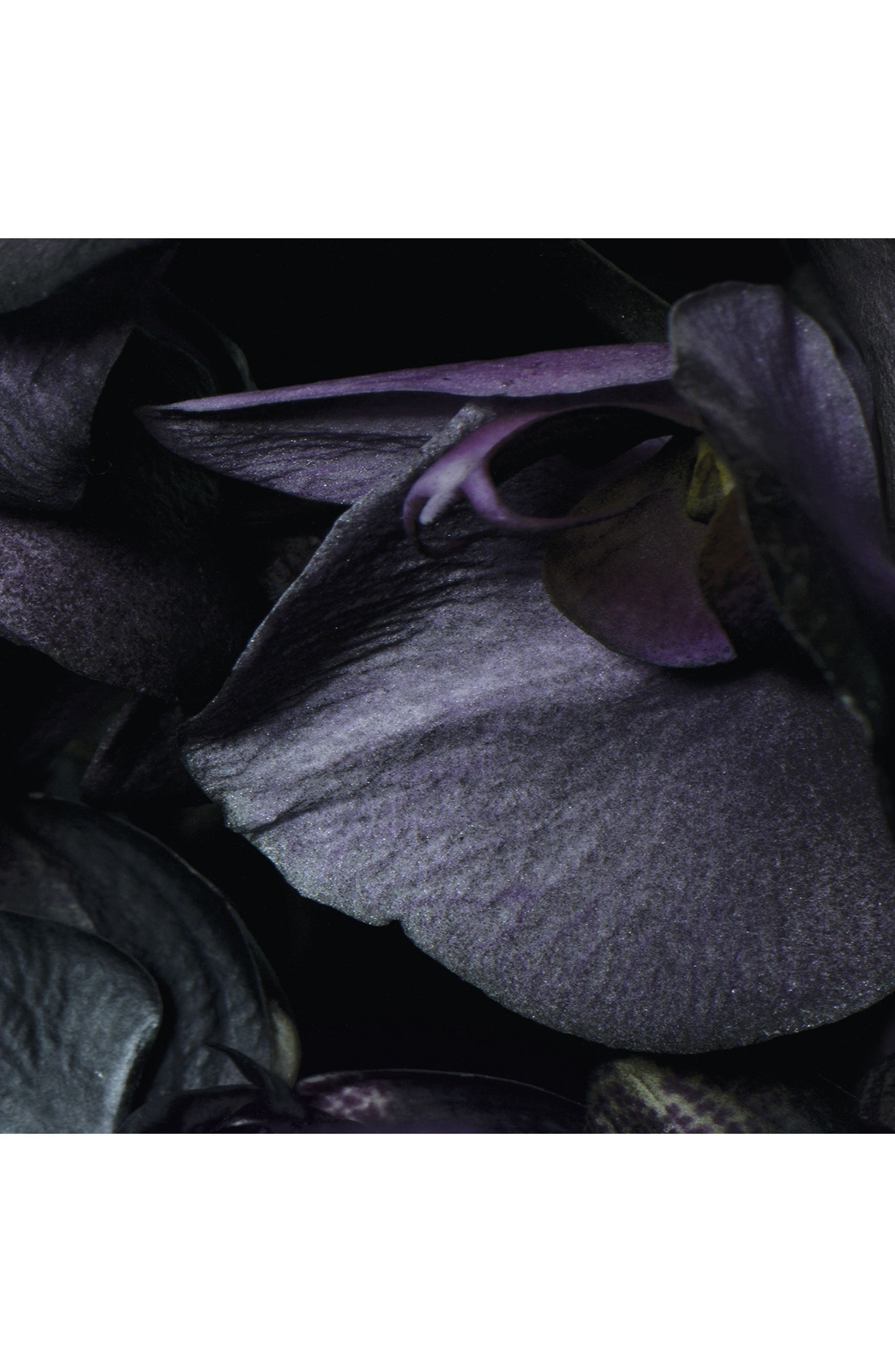 Alternate Image 3  - Jo Malone™ Dark Amber & Ginger Lily Candle