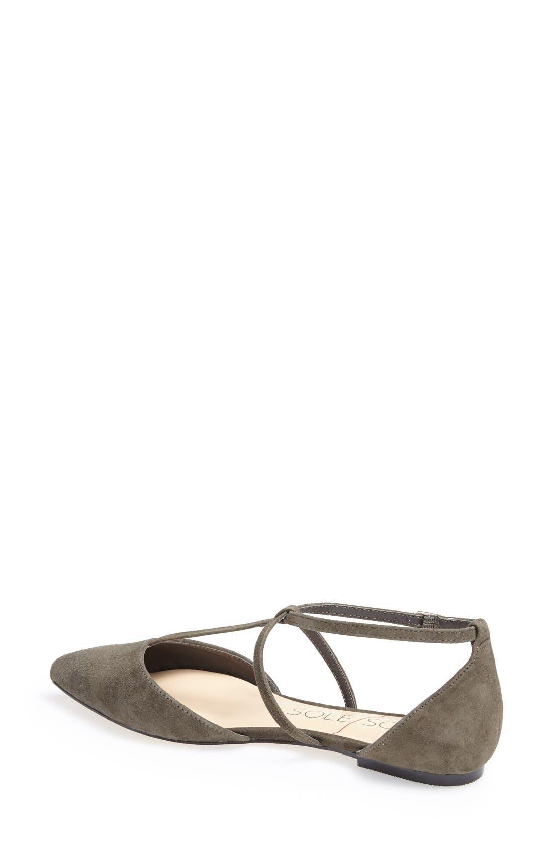 Alternate Image 2  - Sole Society 'Chandler' Pointy Toe Flat (Women)
