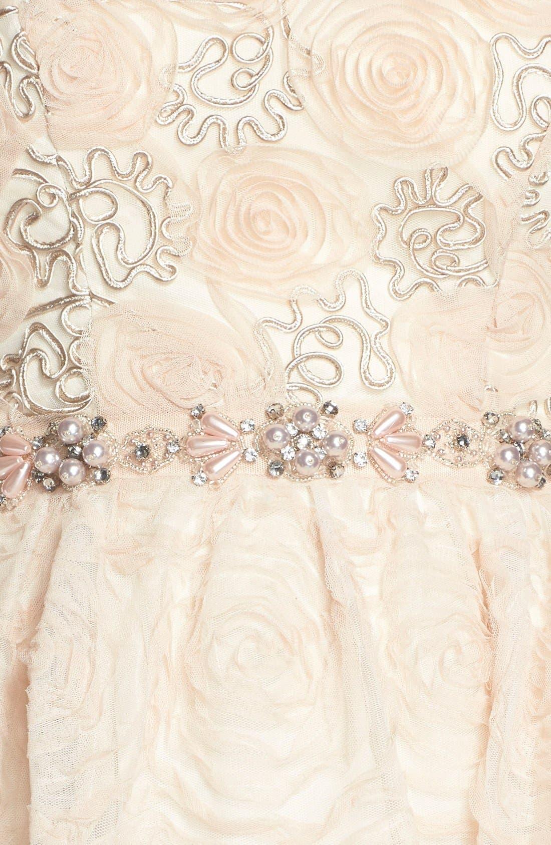 Alternate Image 4  - Adrianna PapellEmbellished Tulle Fit & Flare Dress