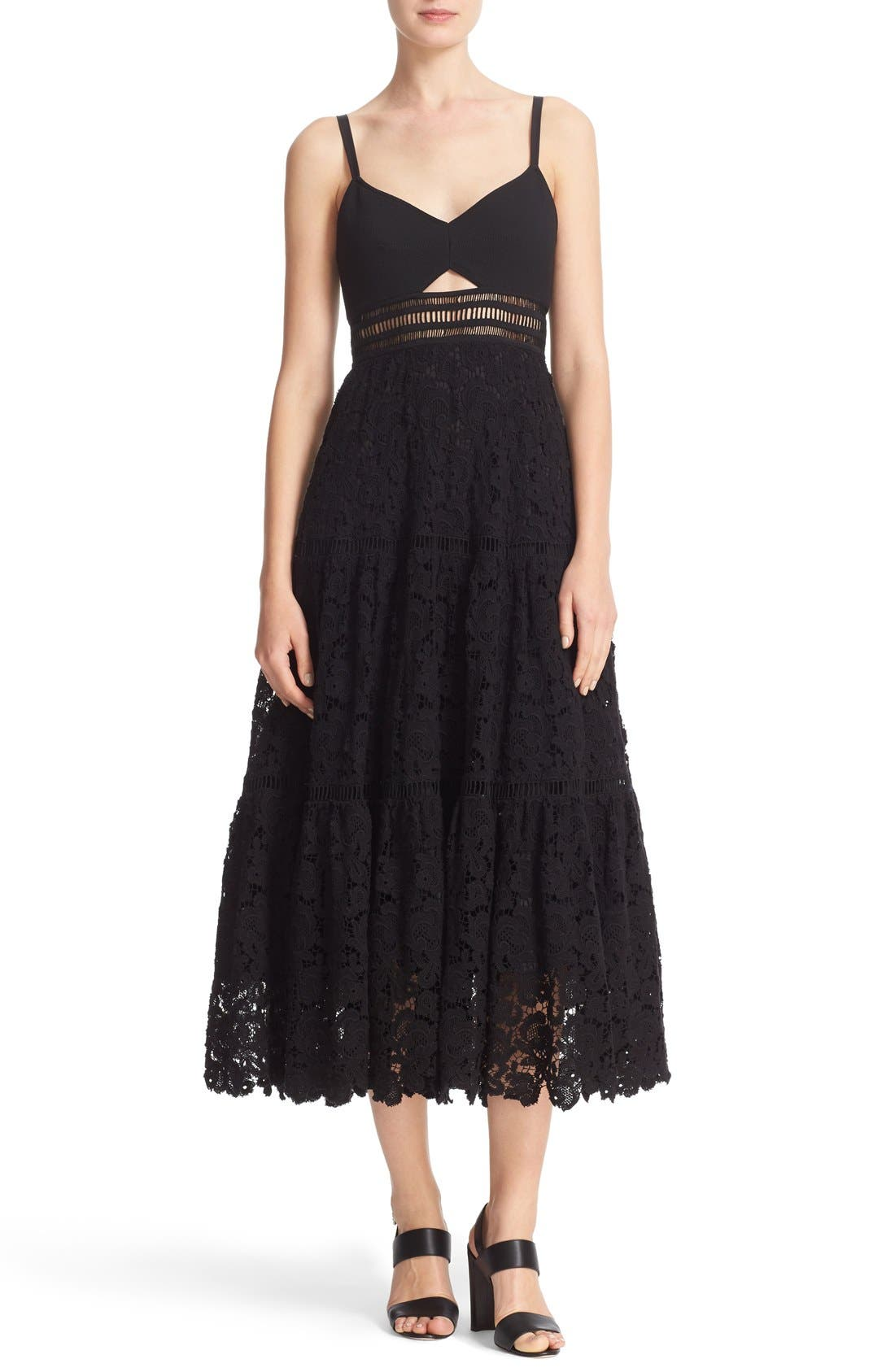 Alternate Image 1 Selected - Rebecca Taylor Lace Dress