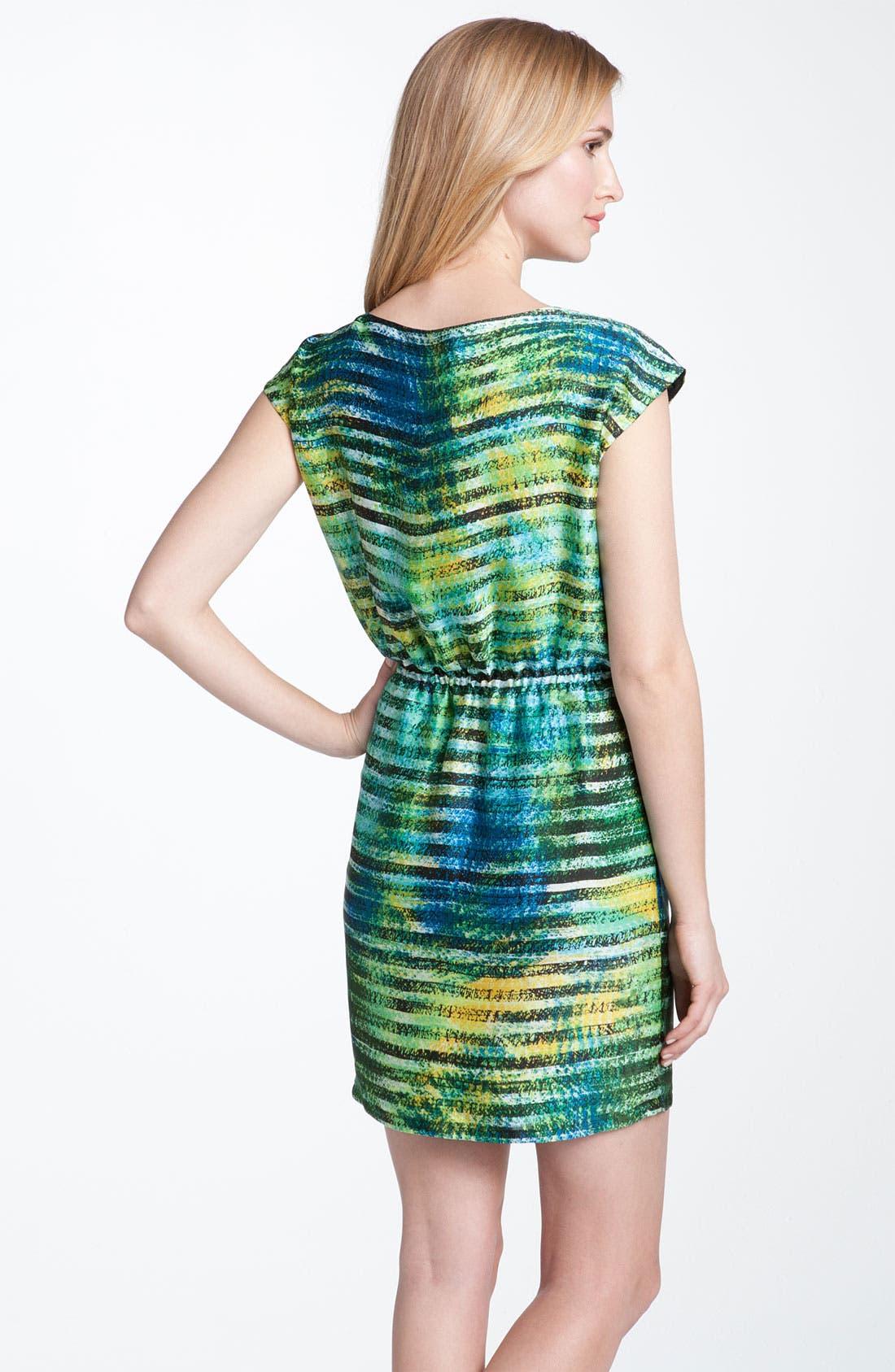 Alternate Image 2  - Chaus 'Spray Paint Stripe' Dress