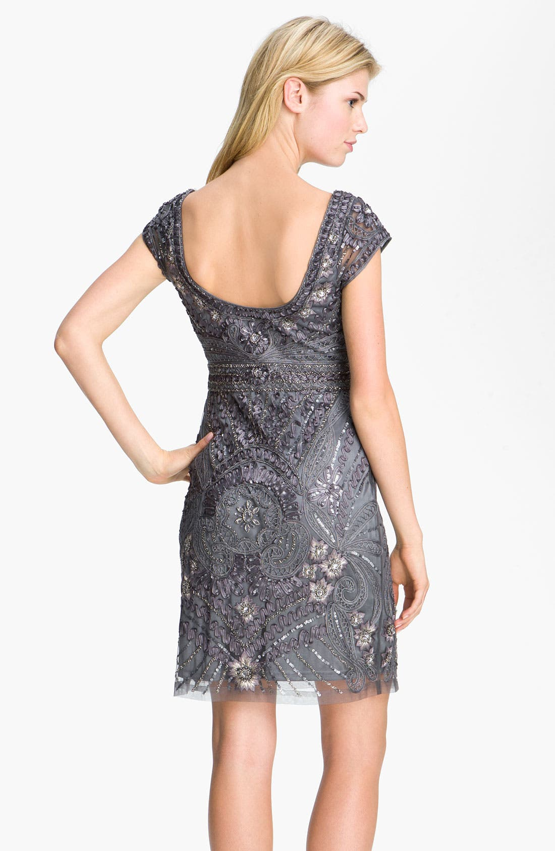 Alternate Image 2  - Sue Wong Cap Sleeve Embroidered Tulle Sheath Dress