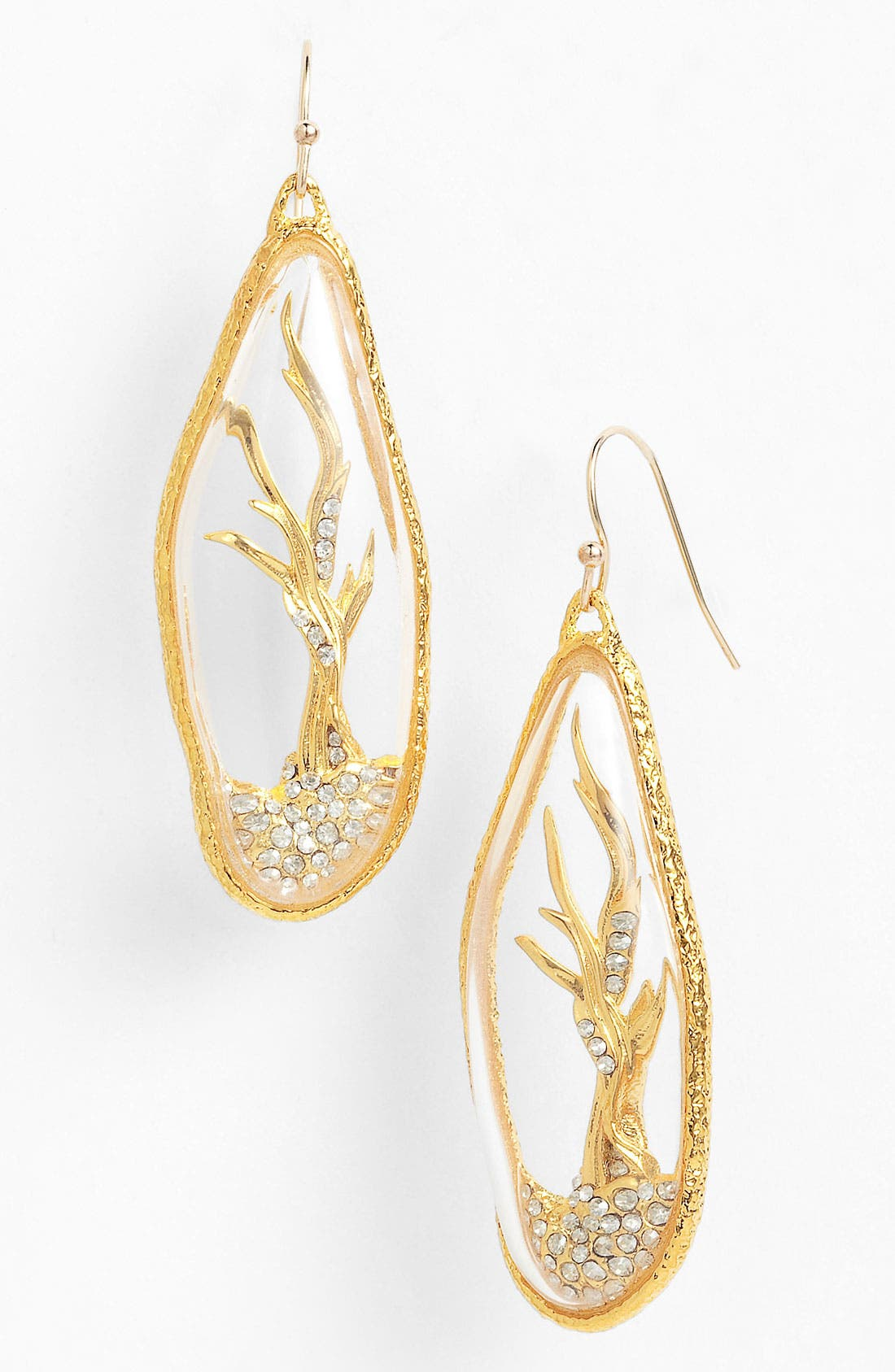 Alternate Image 1 Selected - Alexis Bittar 'Elements - Siyabona' Reliquary Earrings
