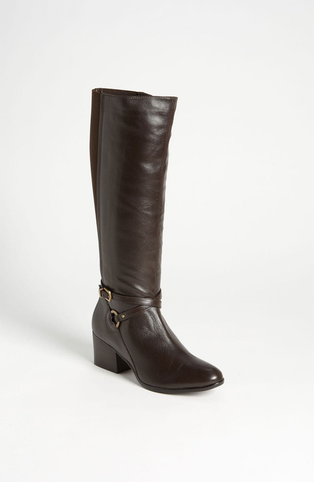 Alternate Image 1 Selected - VANELi 'Candie' Tall Boot (Online Only)