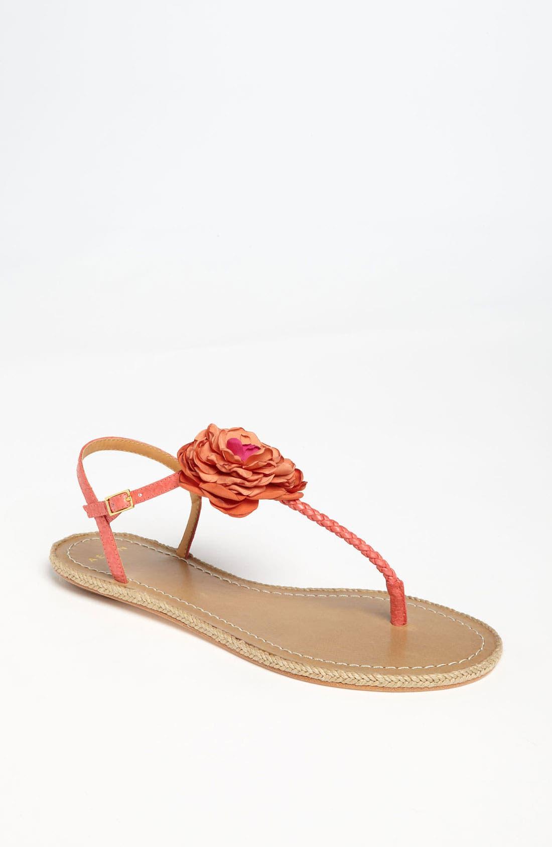 Alternate Image 1 Selected - Aerin 'Pedros' Sandal