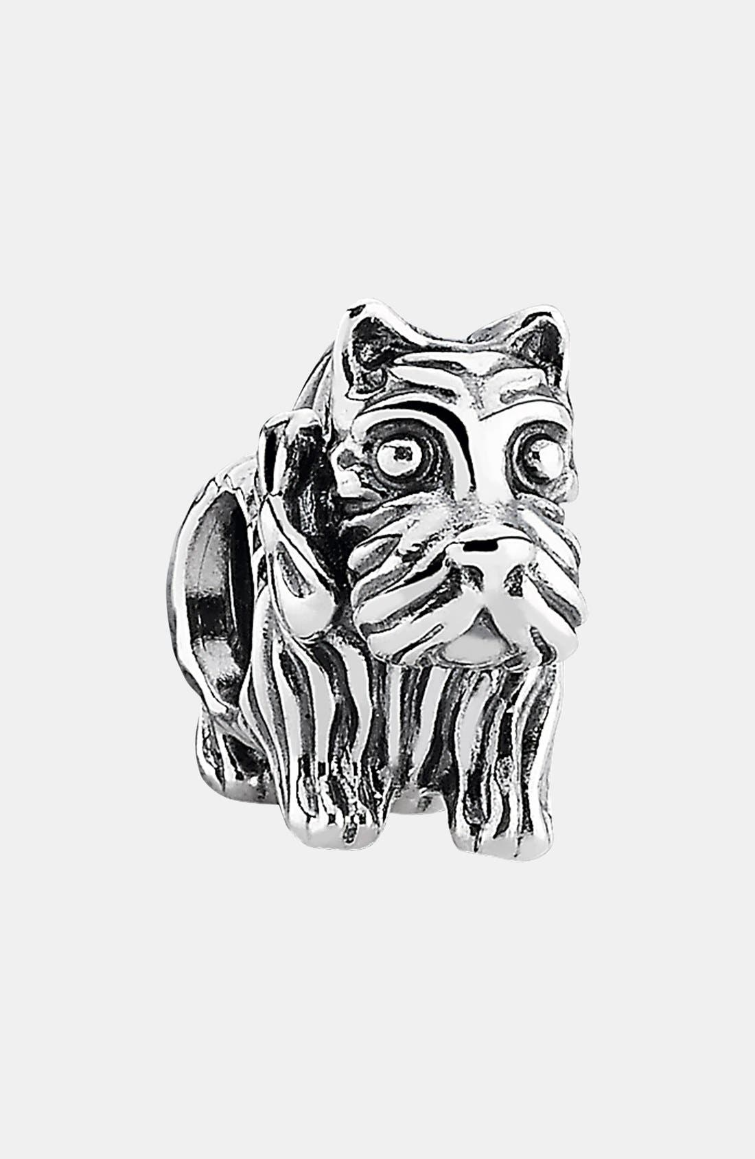 Alternate Image 1 Selected - PANDORA Scottie Charm