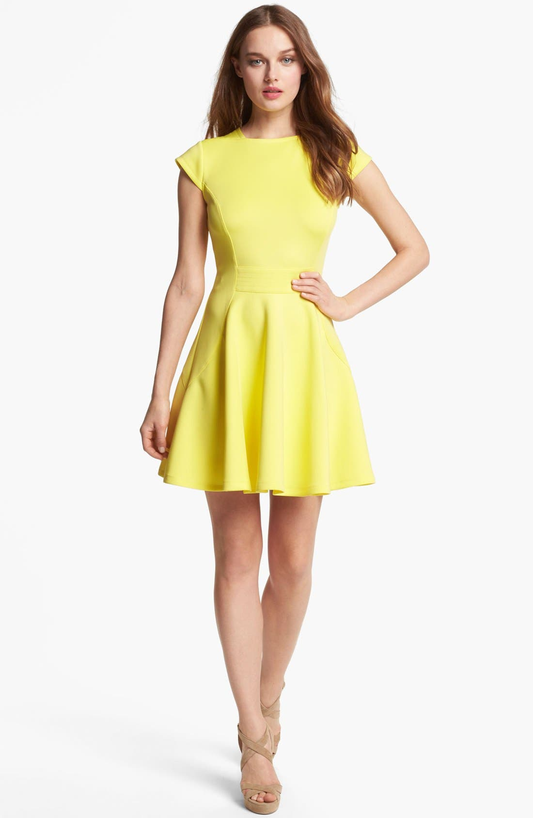 Alternate Image 1 Selected - Ted Baker London Stretch Fit & Flare Dress