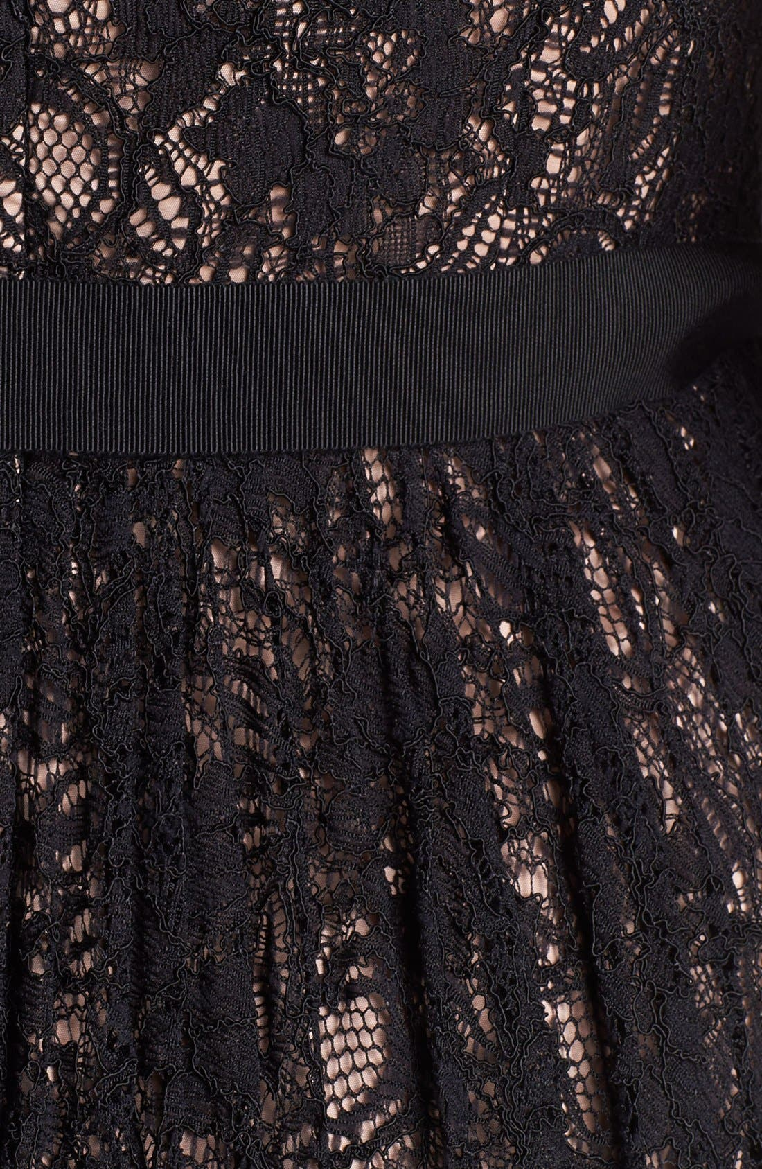 Alternate Image 4  - Adrianna Papell Lace Fit & Flare Dress