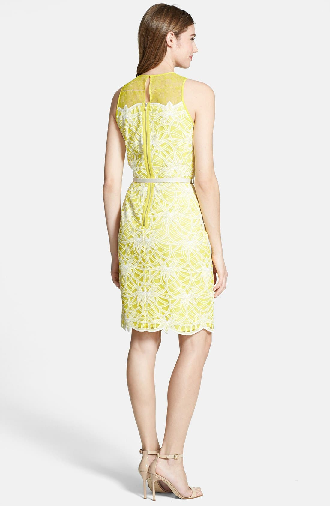 Alternate Image 2  - Maggy London Belted Embroidered Lace Sheath Dress